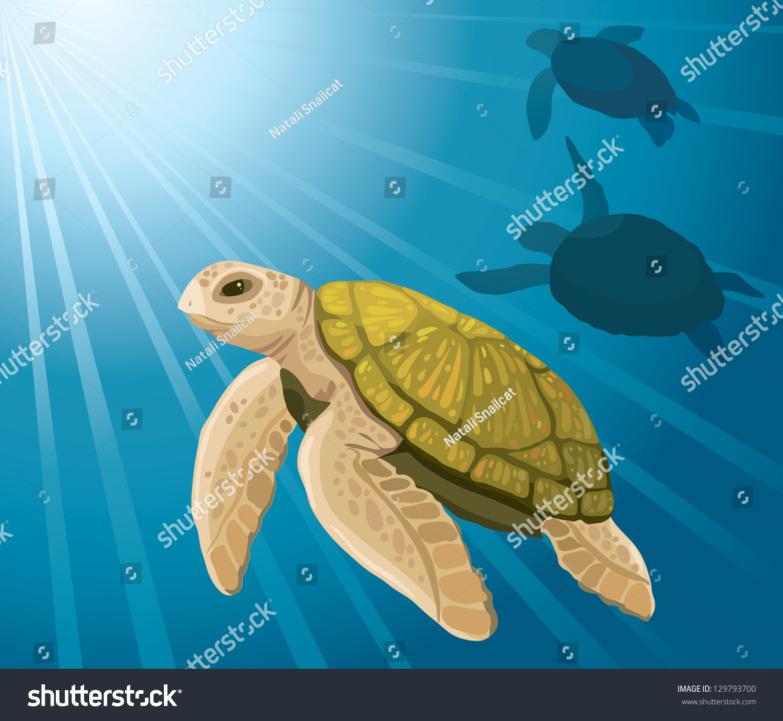 Cartoon baby sea turtle