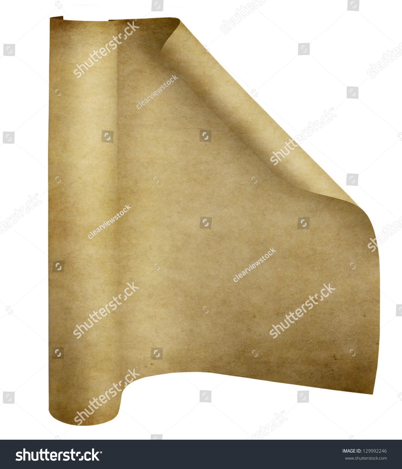 old parchment paper scroll isolated on stock illustration 129992246