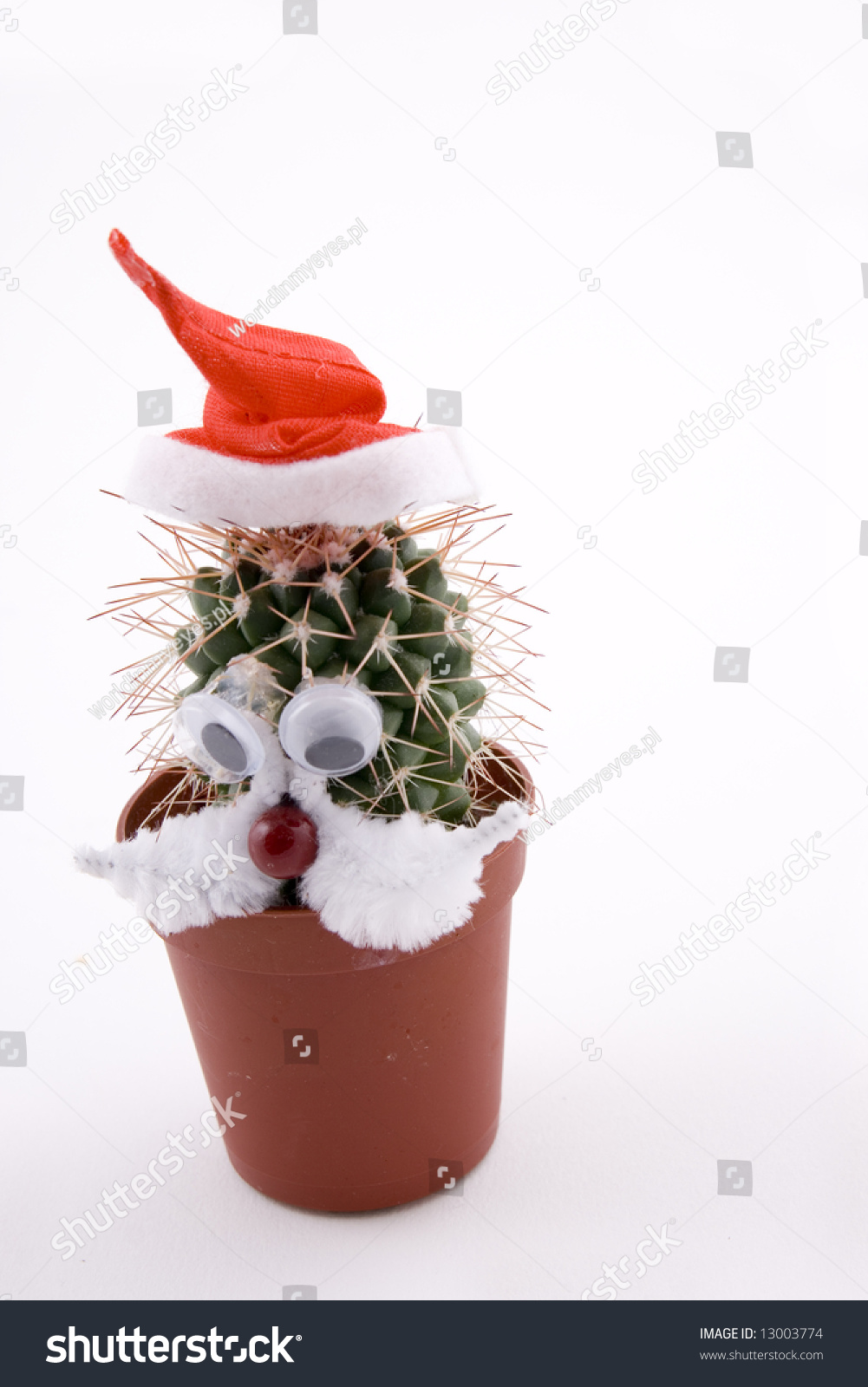 Cactus plant as a santa claus funny figure stock photo