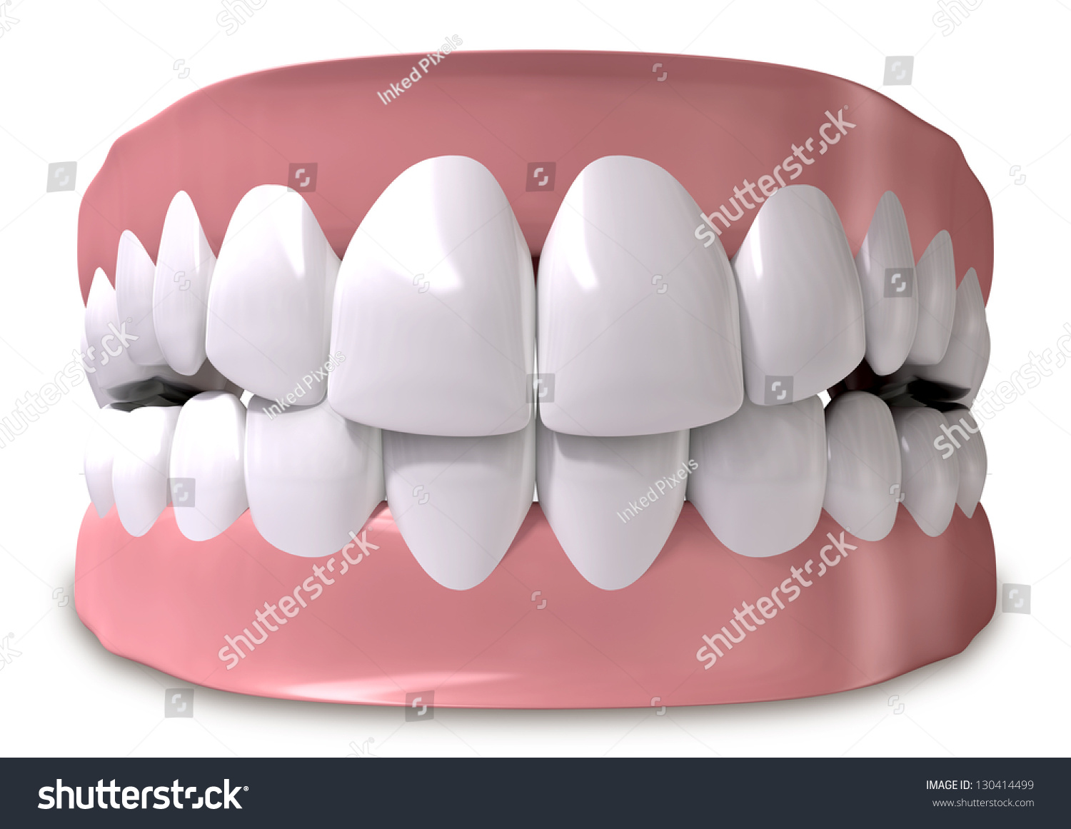 Luxury Pictures Of Human Teeth Pattern - Anatomy Ideas - yunoki.info