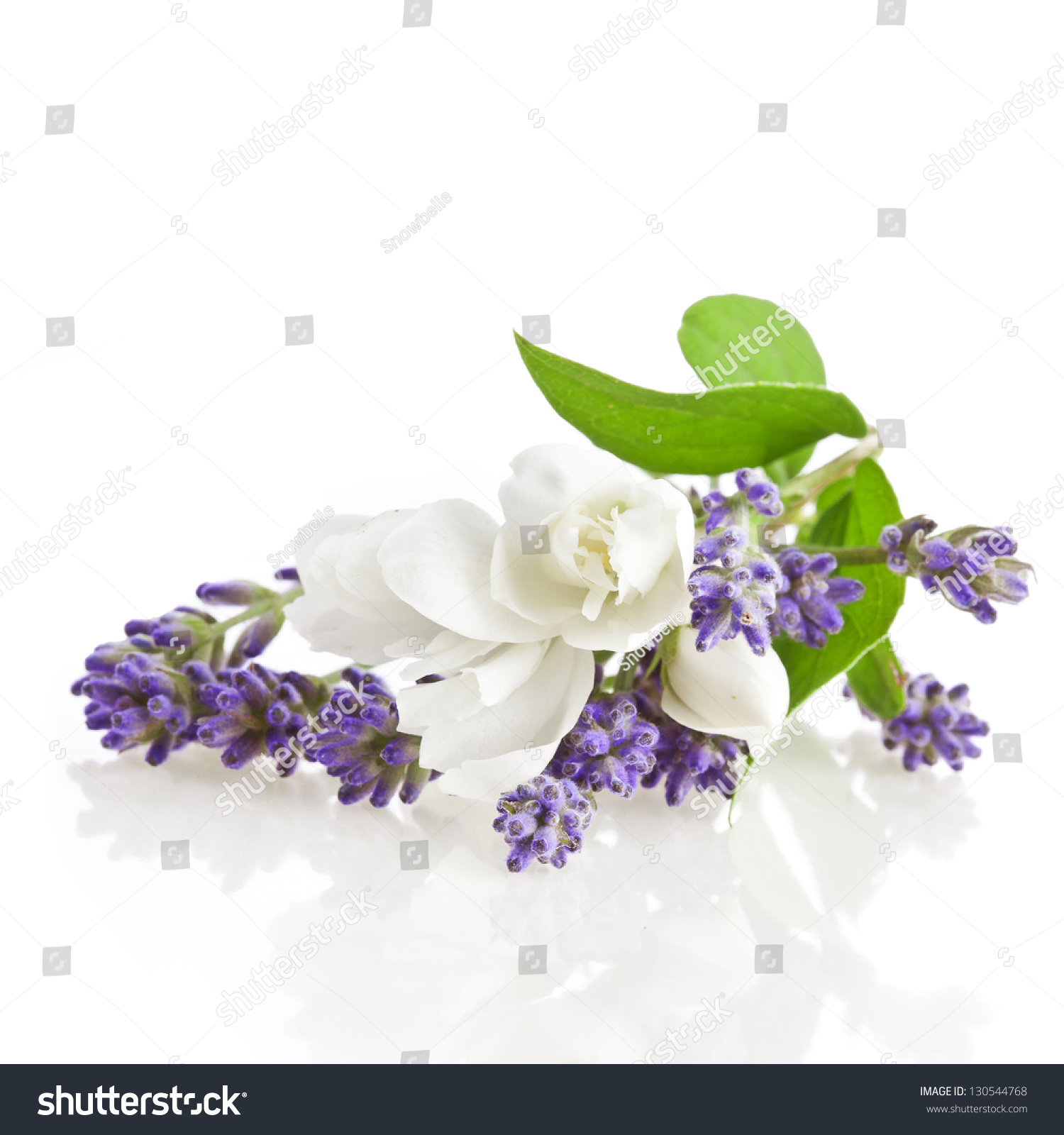 Royalty Free Bunch Of Lavender And Jasmine Flowers 130544768 Stock