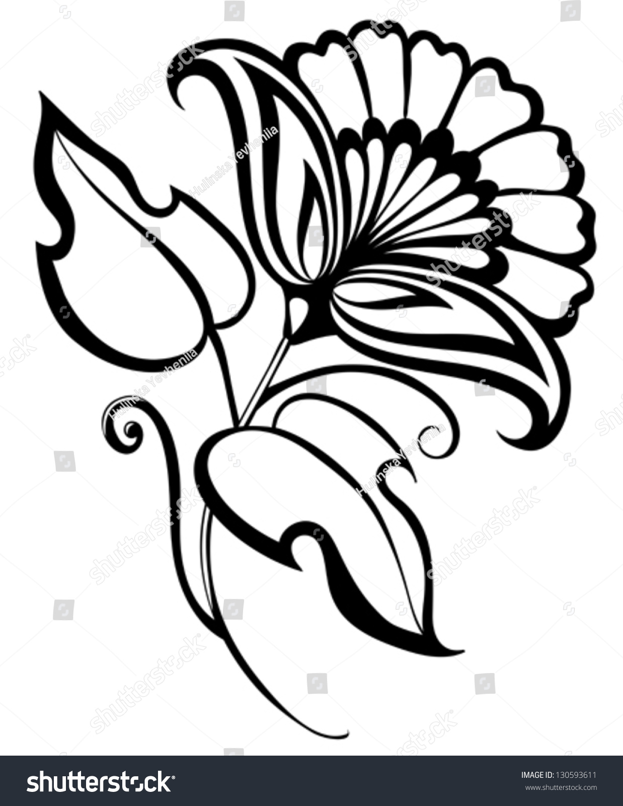 Beautiful Black White Flower Hand Drawing Stock Vector Royalty Free