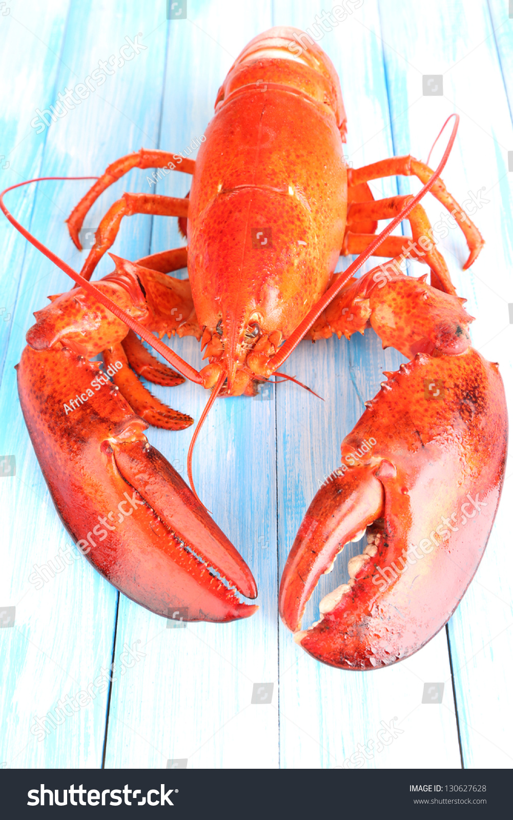 Red lobster on wooden table close up stock photo