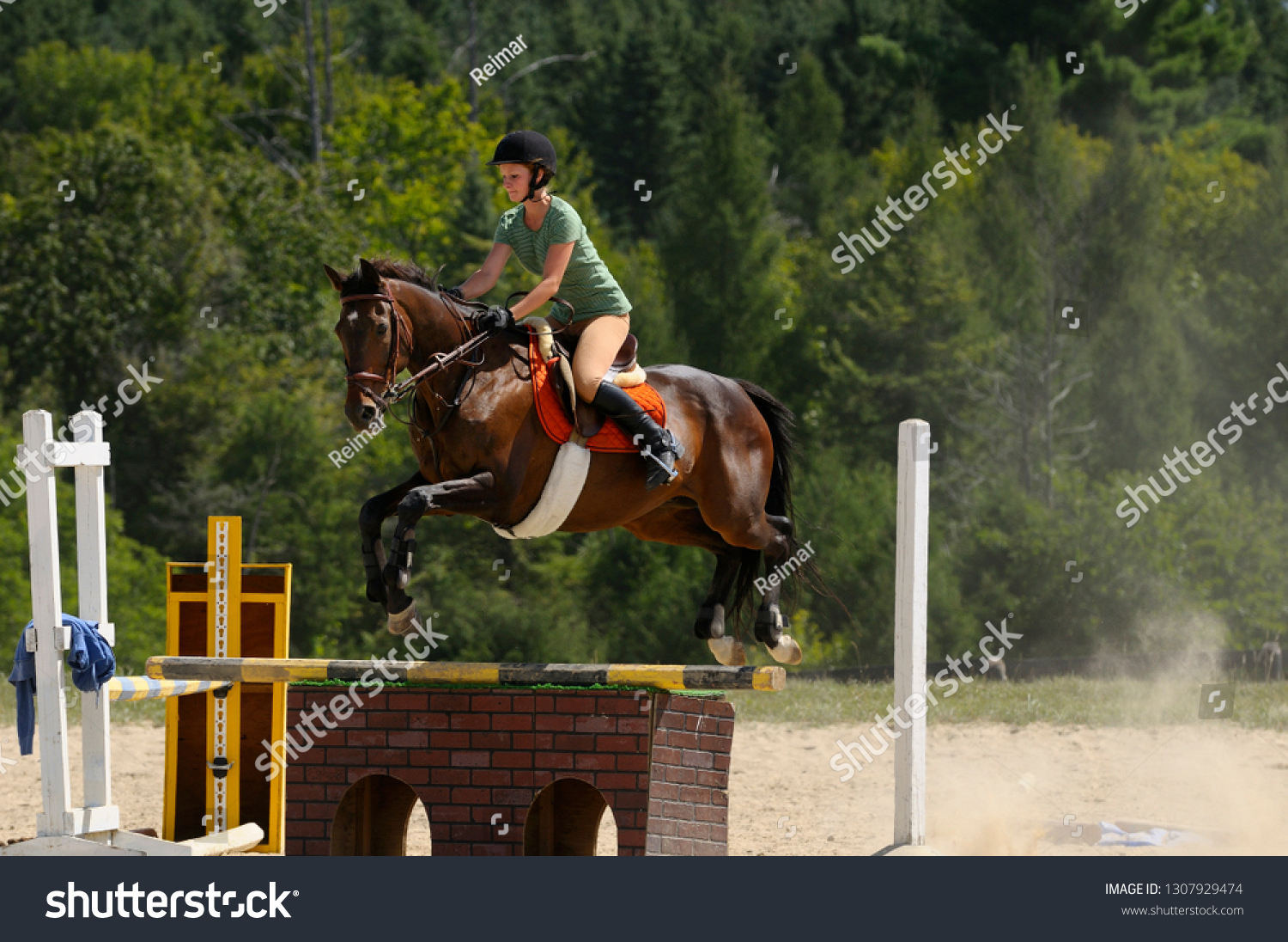 Female Jumper Soaring Over Jump Thoroughbred Stock Photo Edit Now 1307929474