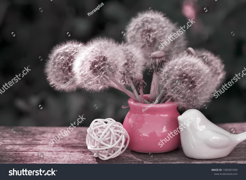 stock-photo-fluffy-dandelions-in-a-vase-