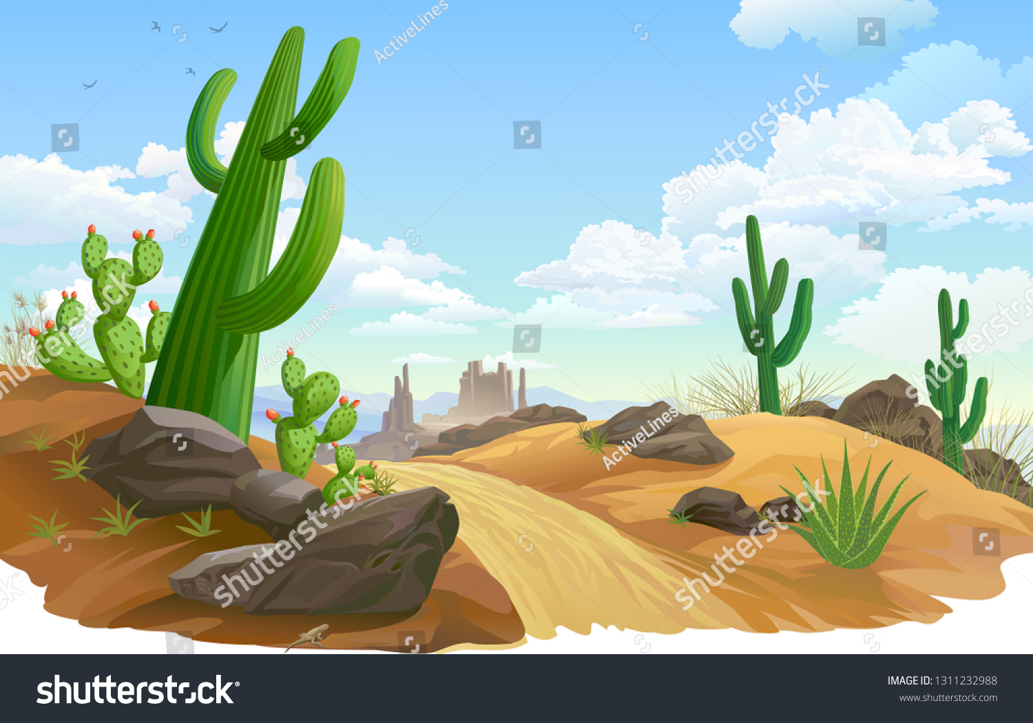 Rocks, Saguaro and cactus infested desert region. A sandy road across desert vegetation.