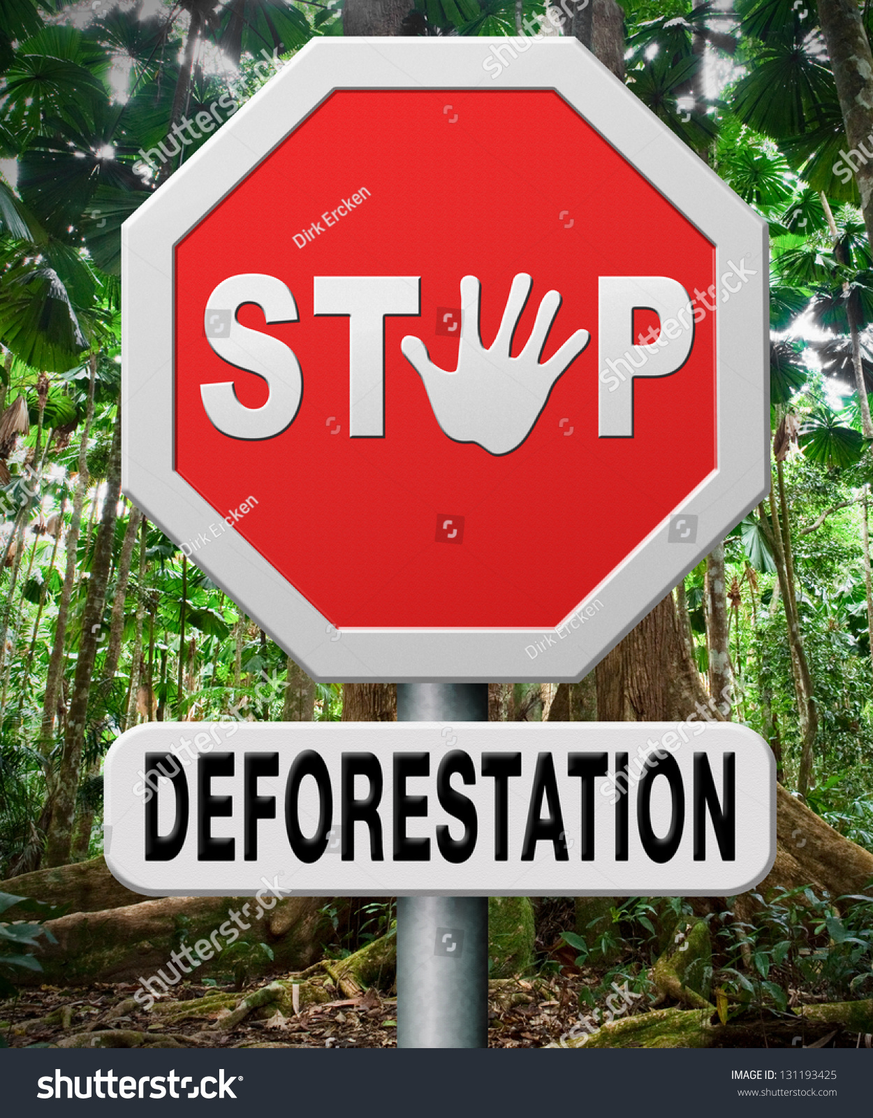 Protecting The African Woman By Blurring The Gender Lines: Stop Deforestation Protect Tropical Rainforest Amazon