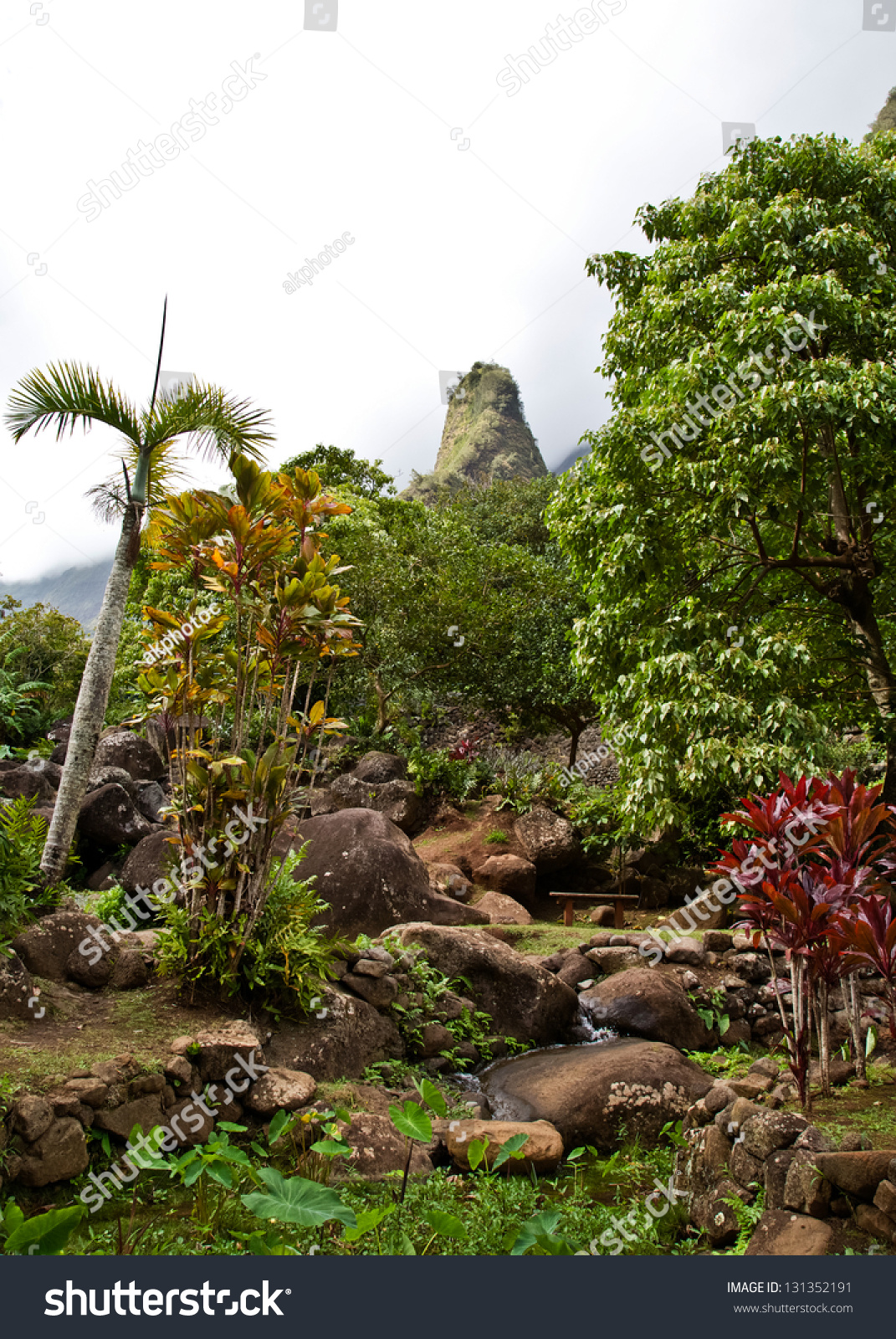 View Mauis Iao Needle Stock Photo 131352191 - Shutterstock