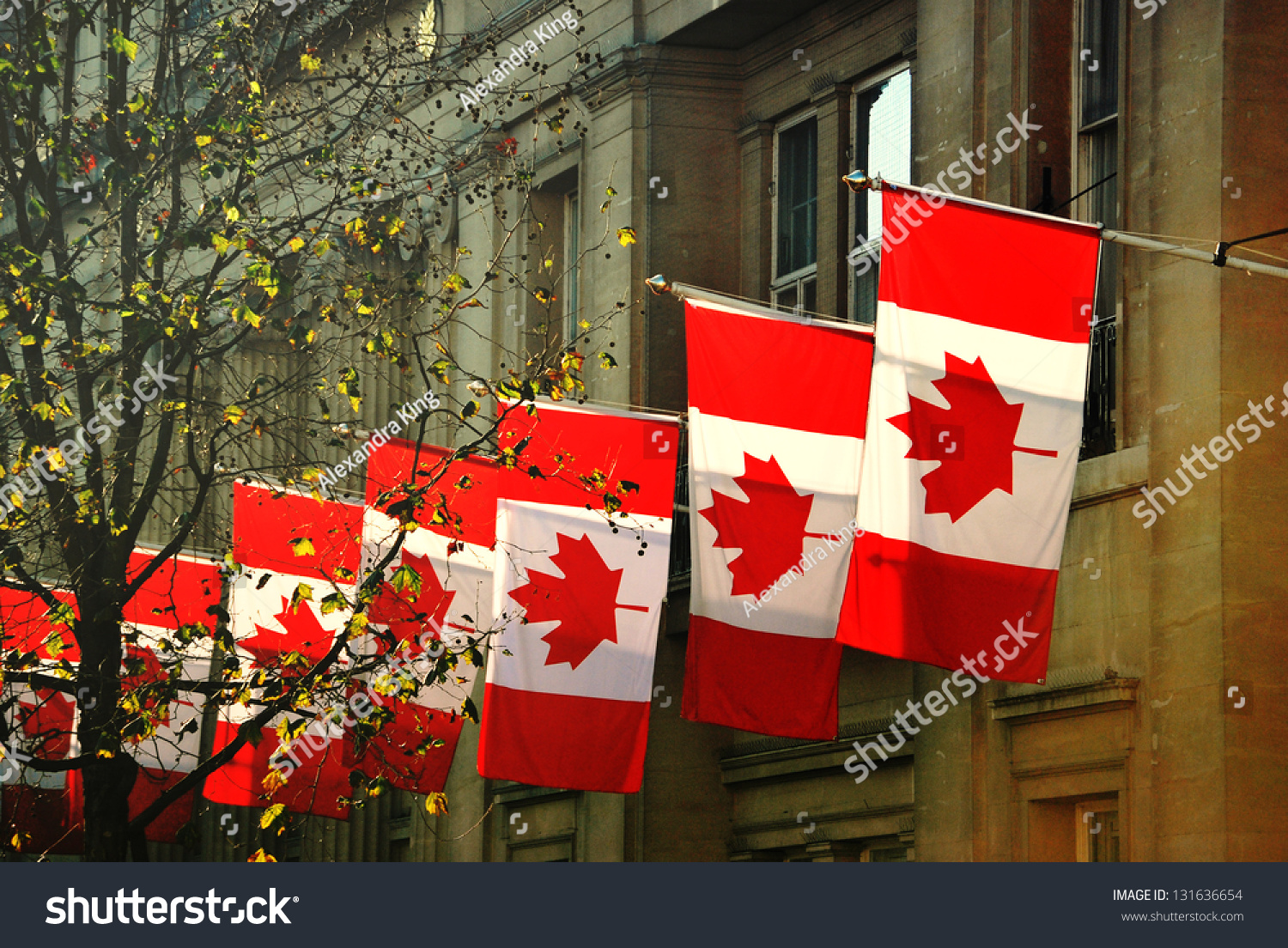 row canadian flags outside canada house stock photo 131636654