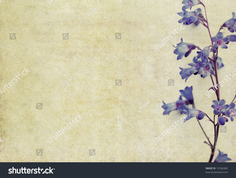 Lovely Light Brown Background Image Interesting Stock ... - photo#31