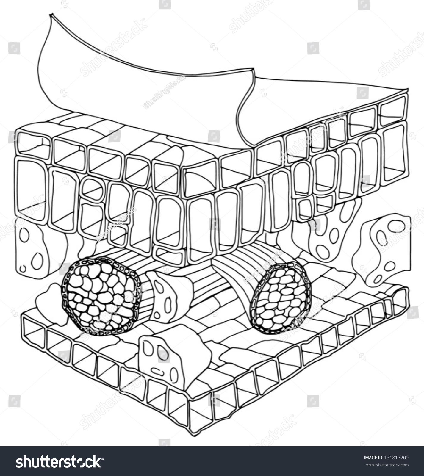Black White Sketh Structure Leaf Stock Vector 131817209 - Shutterstock