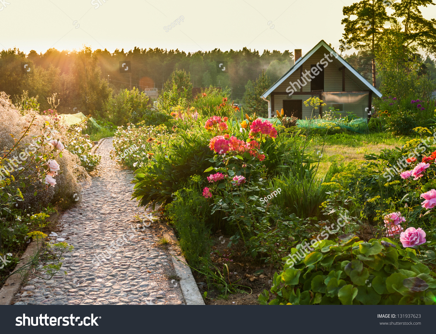 road in the beautiful garden - Beautiful Garden Pictures