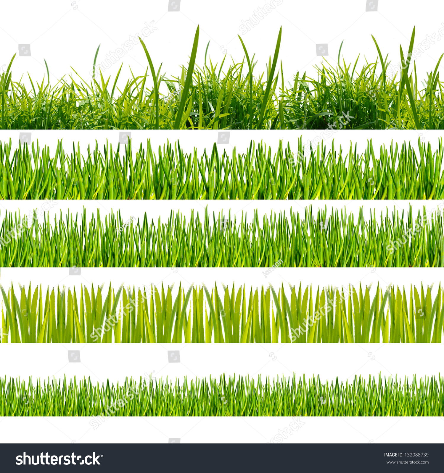 green grass on the white background stock photo 132088739   shutterstock