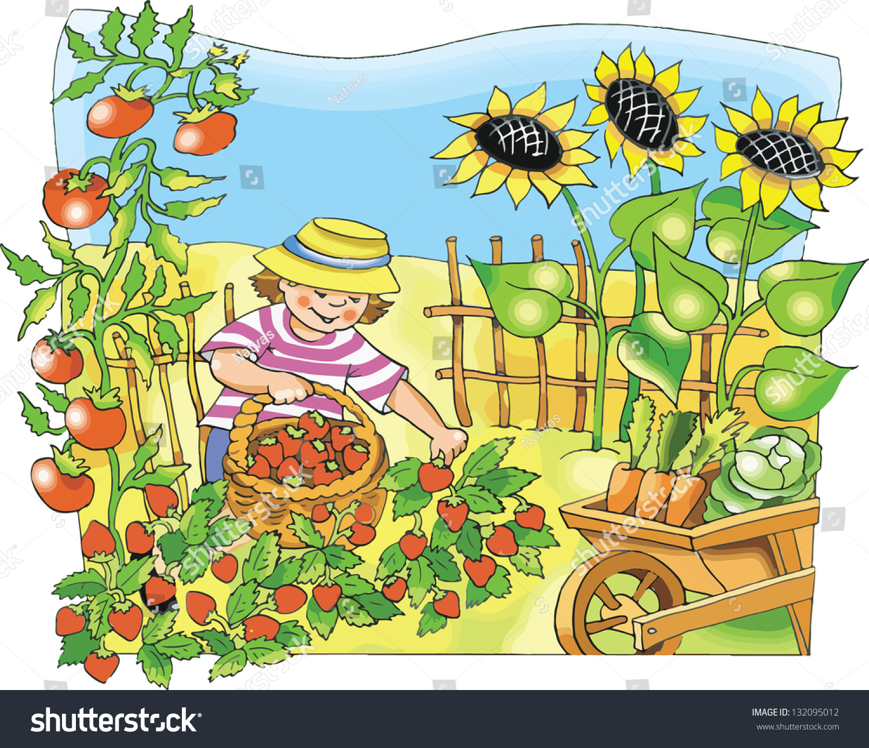 Рисунки для сада и огорода