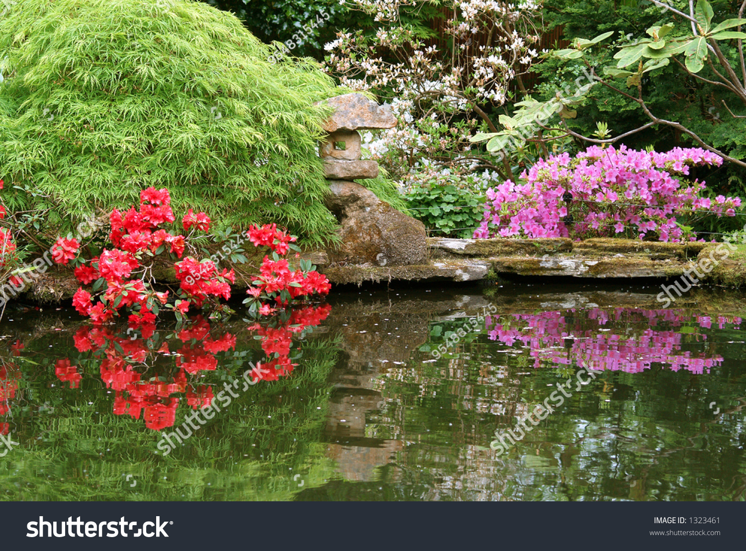 Japanese style pond stock photo 1323461 shutterstock for Japanese style pond