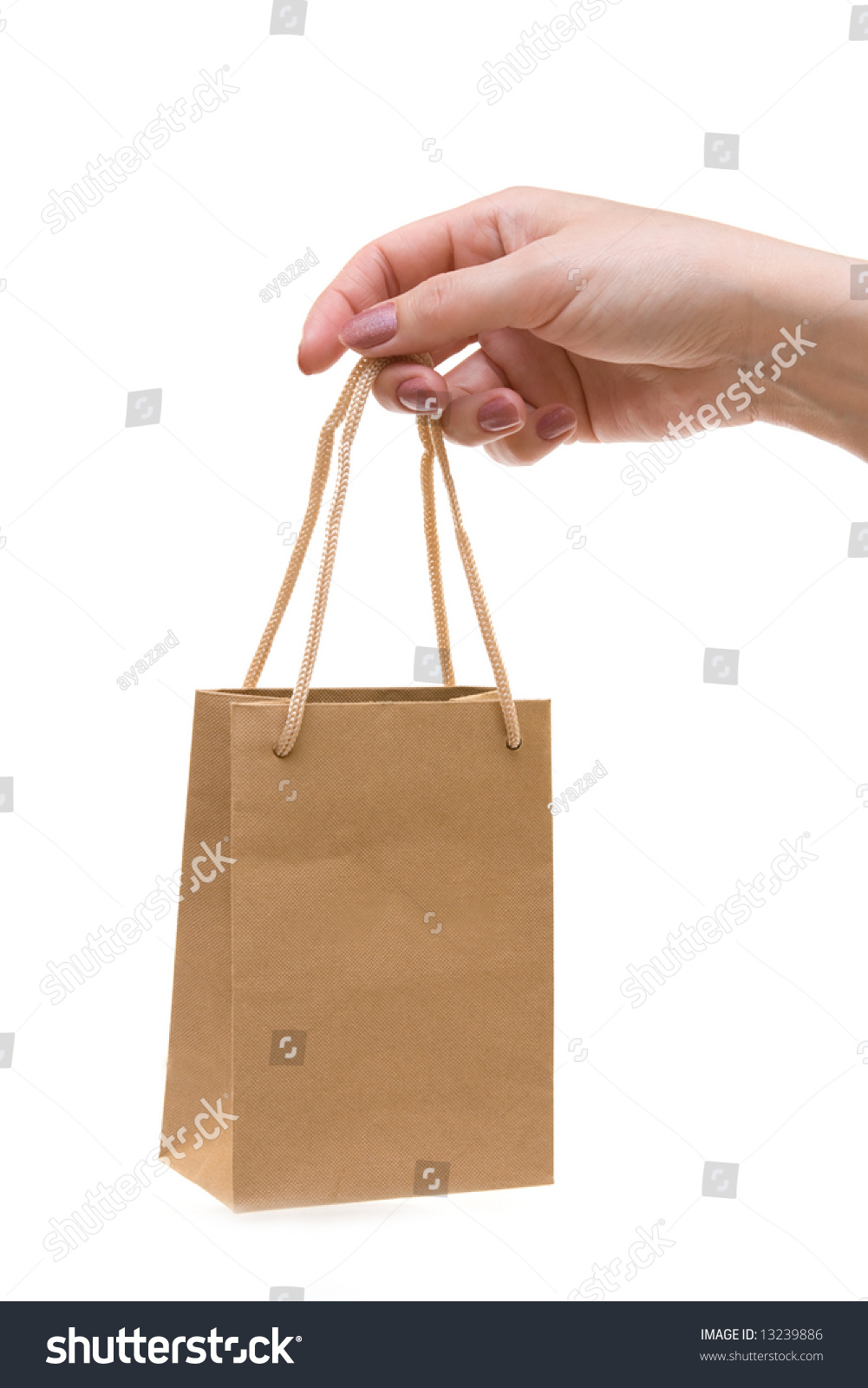 Mini Shopping Bag Hand Stock Photo 13239886 - Shutterstock