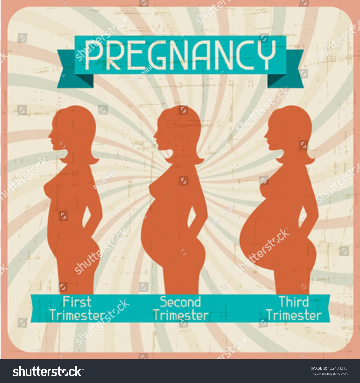 Silhouette Pregnant Woman Three Trimesters Stock Vector 132484313 ...