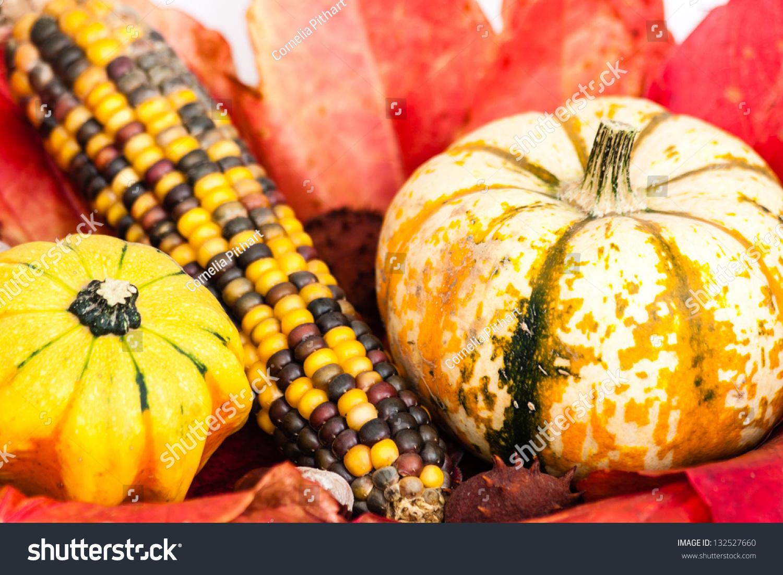 Decoration Autumn Corn Cob Pumpkin Stock Photo 132527660 ...