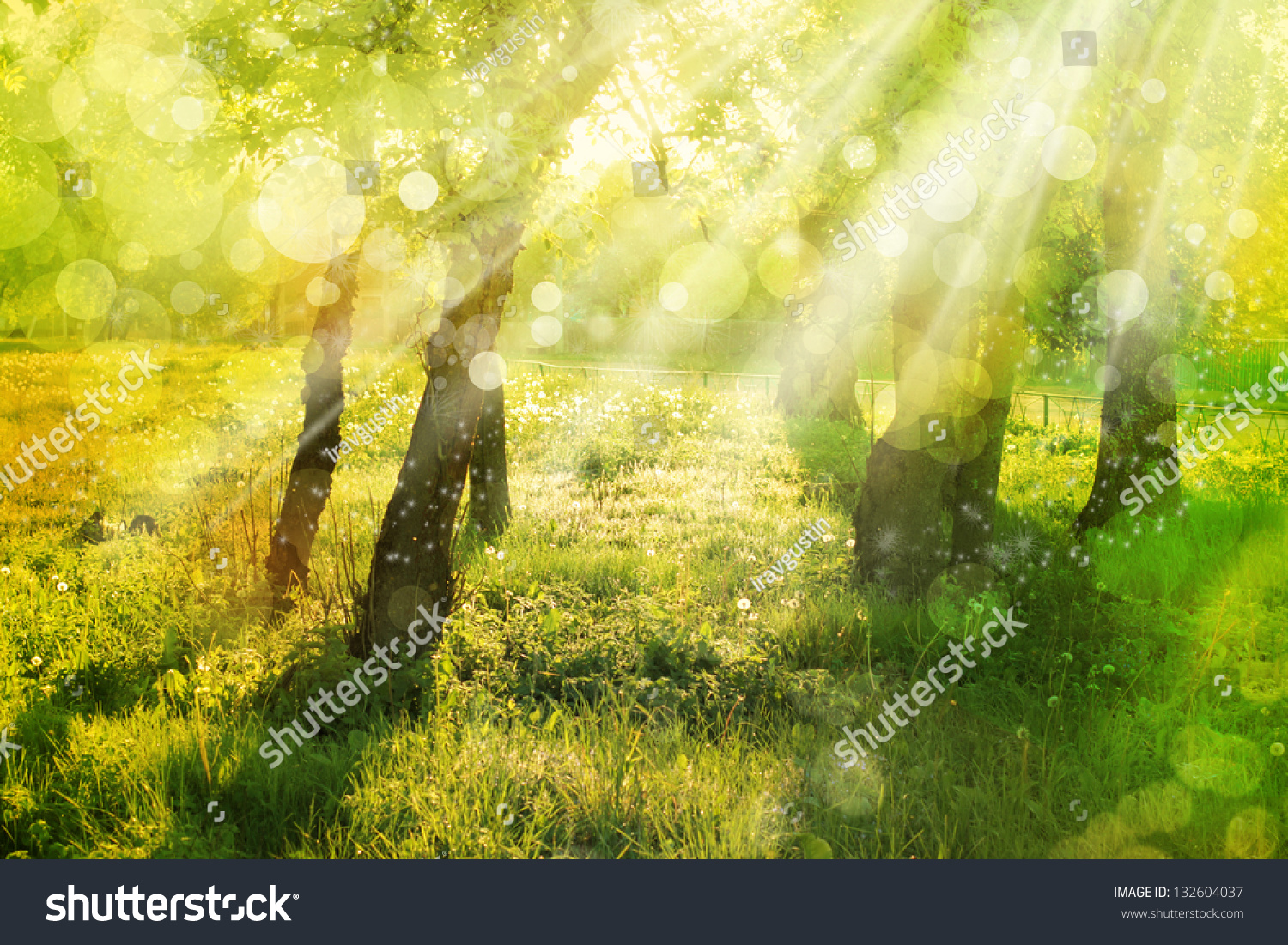 Nature Sunshine Galaxy S4 Wallpapers: Spring Nature Background With Sun Beam / Green Landscape
