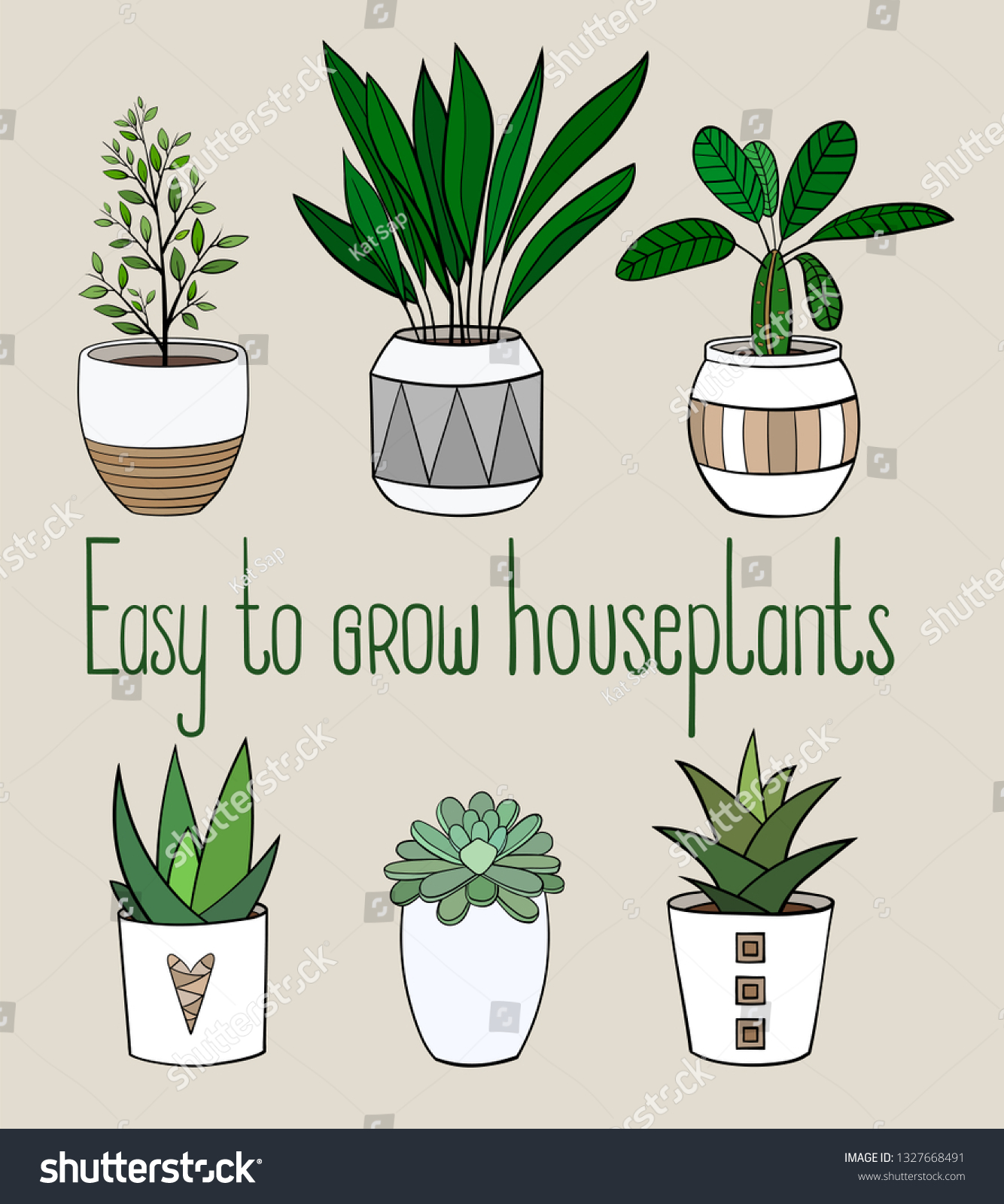 Set Different Easy Grow House Plants Stock Vector Royalty Free 1327668491