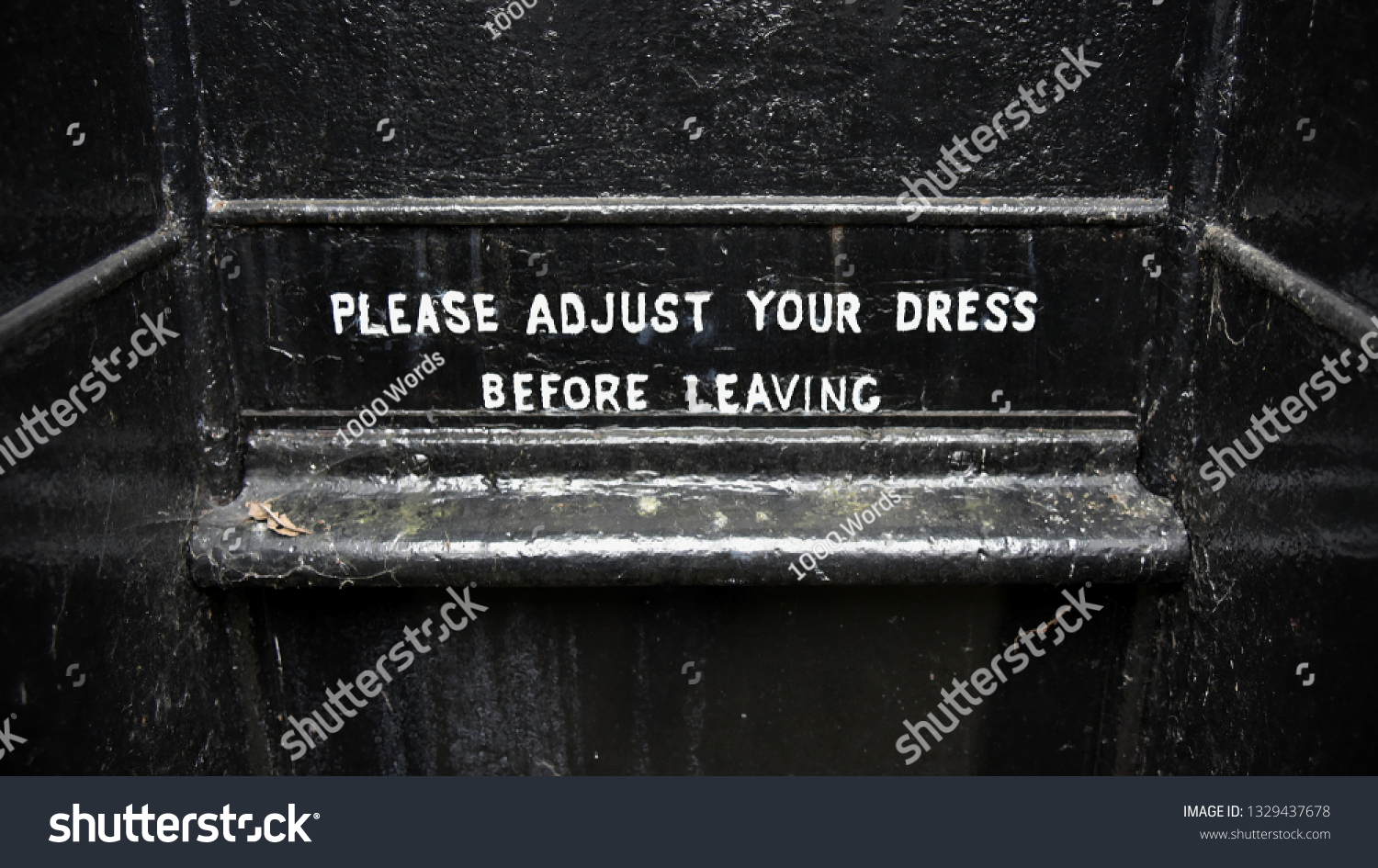 wall art PLEASE ADJUST YOUR DRESS METAL SIGN  RETRO VINTAGE STYLE toilet