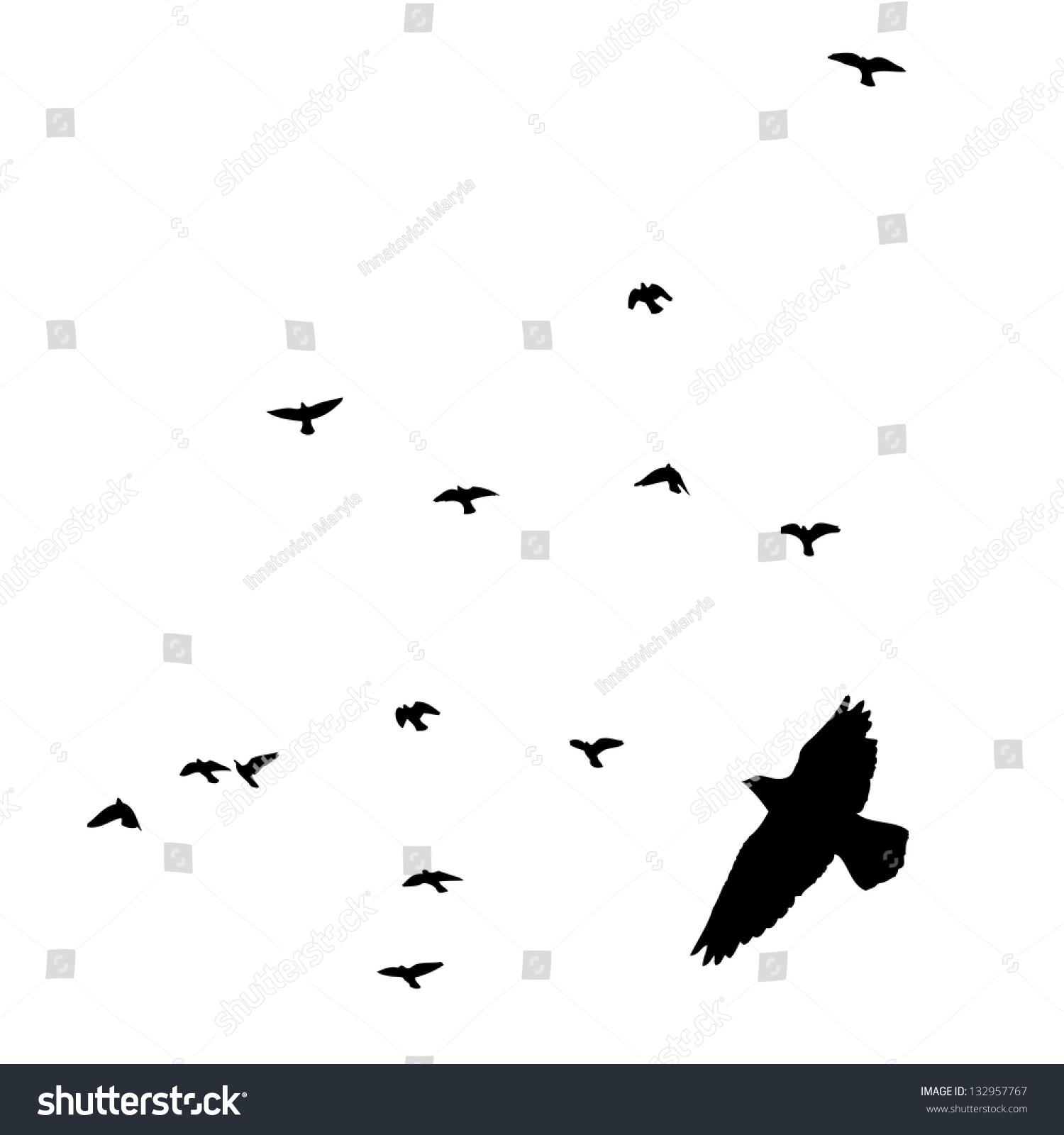 Stock Photo Flying Birds In The Sky Raster