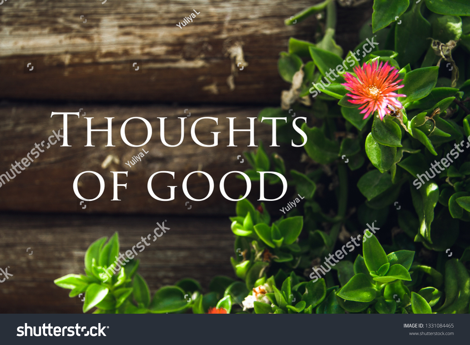 motivational quotes on wooden background flowers stock photo edit