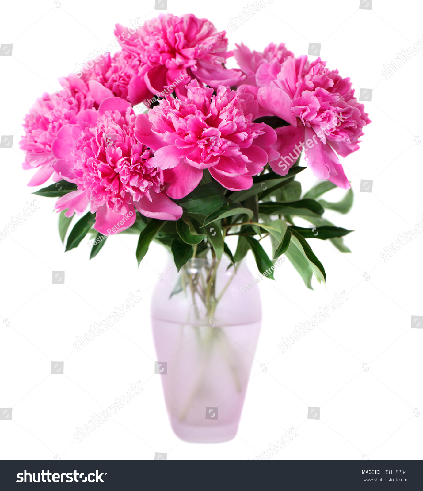 Pink peony flowers vase isolated on stock photo 133118234 pink peony flowers in vase isolated on white dhlflorist Images