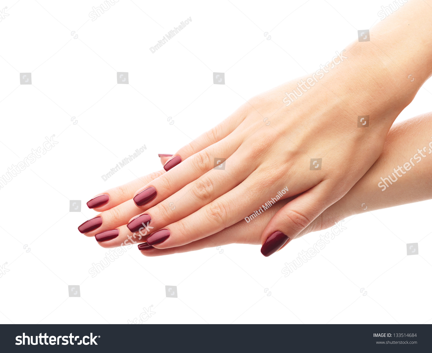 Female Hands Perfect Manicure Over White Stock Photo ...