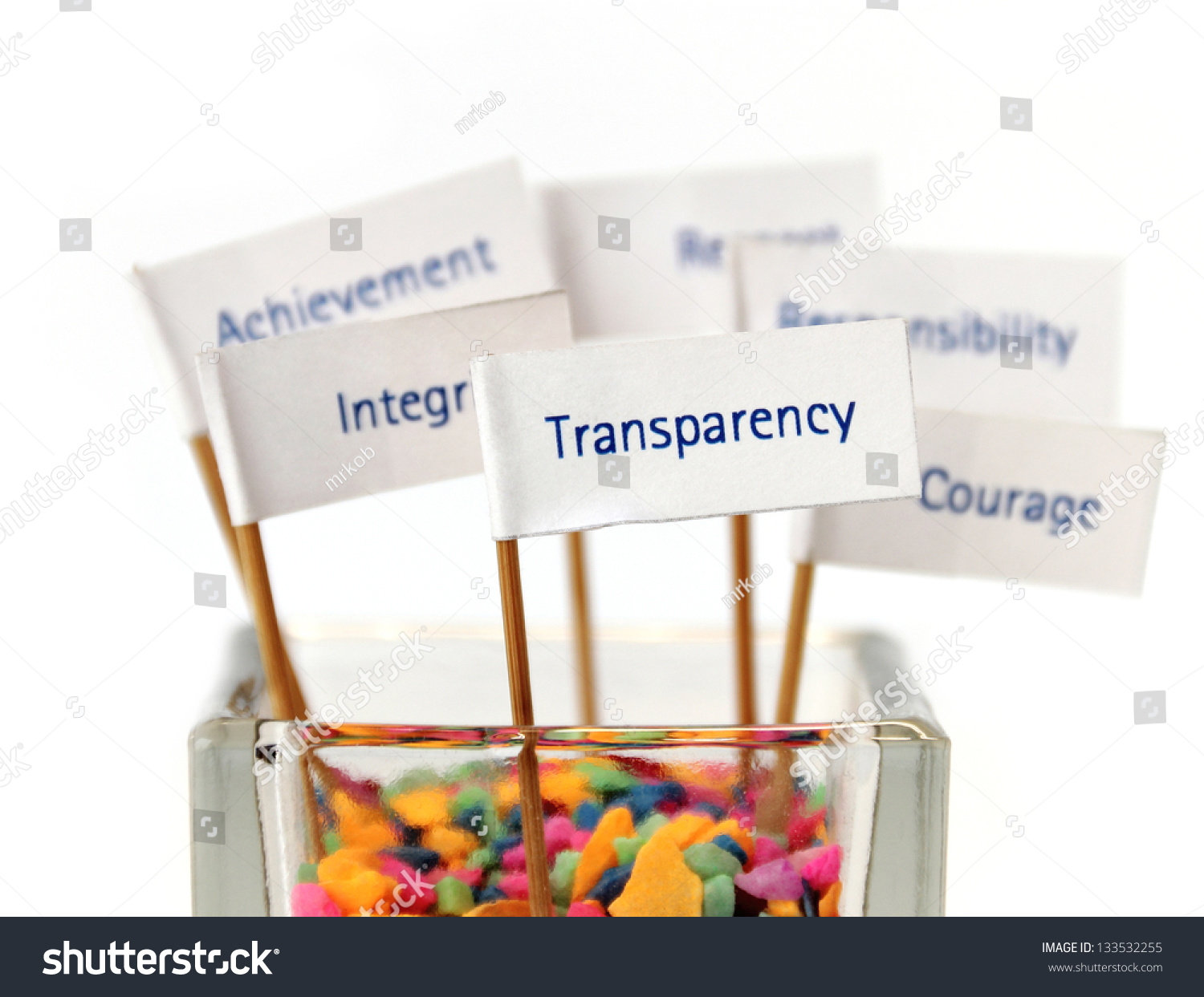 Transparency in business reporting strategy