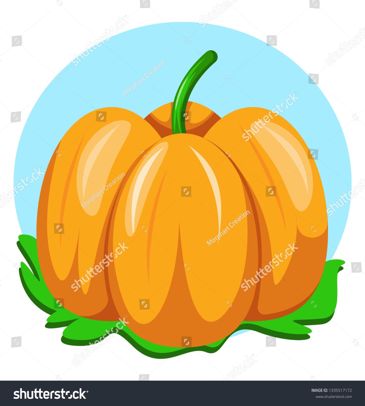 Pumpkin Stem Blue Background Green Leaf Stock Vector Royalty Free 1335517172