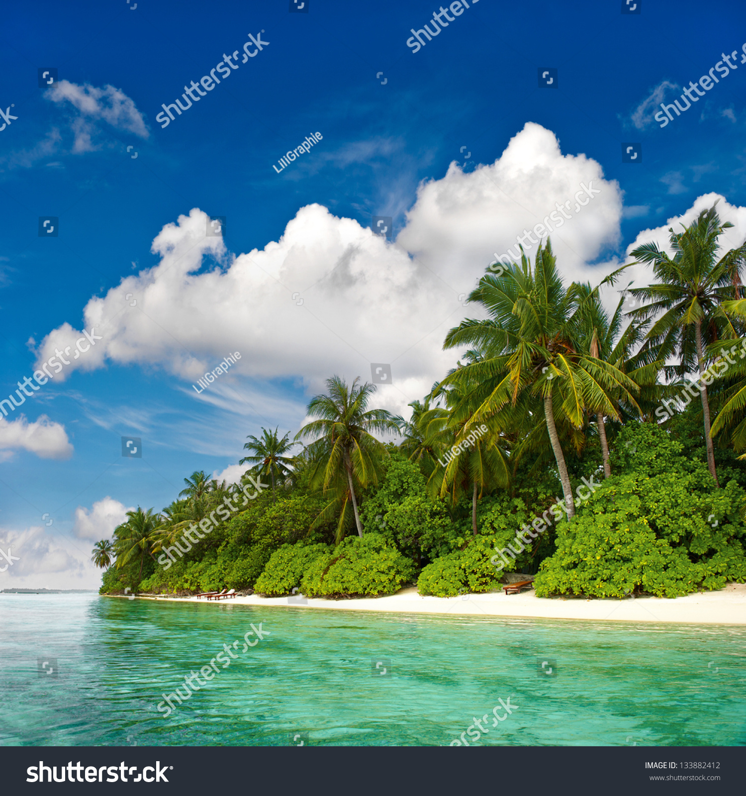 Palm Tree Island: Landscape Tropical Island Beach Palm Trees Stock Photo
