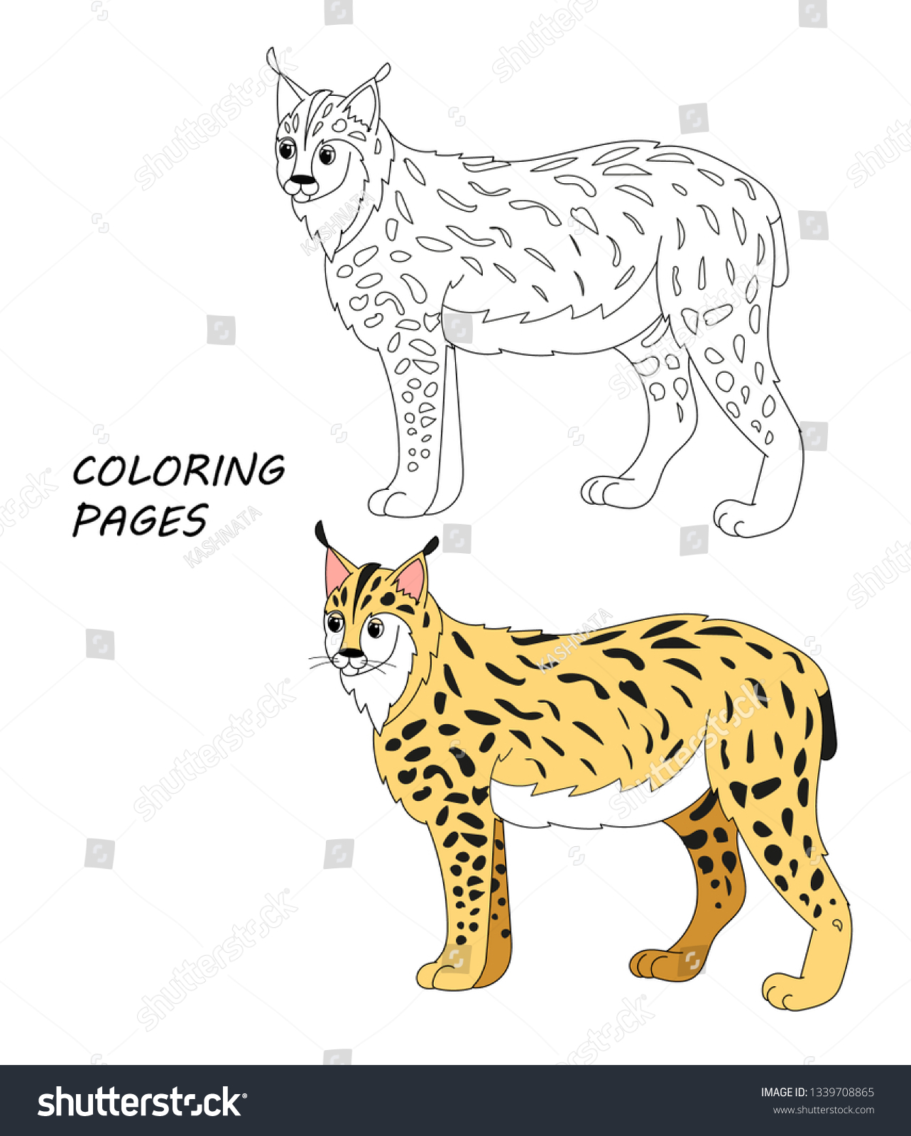 stock vector vector coloring book pages for children cartoon lynx illustration
