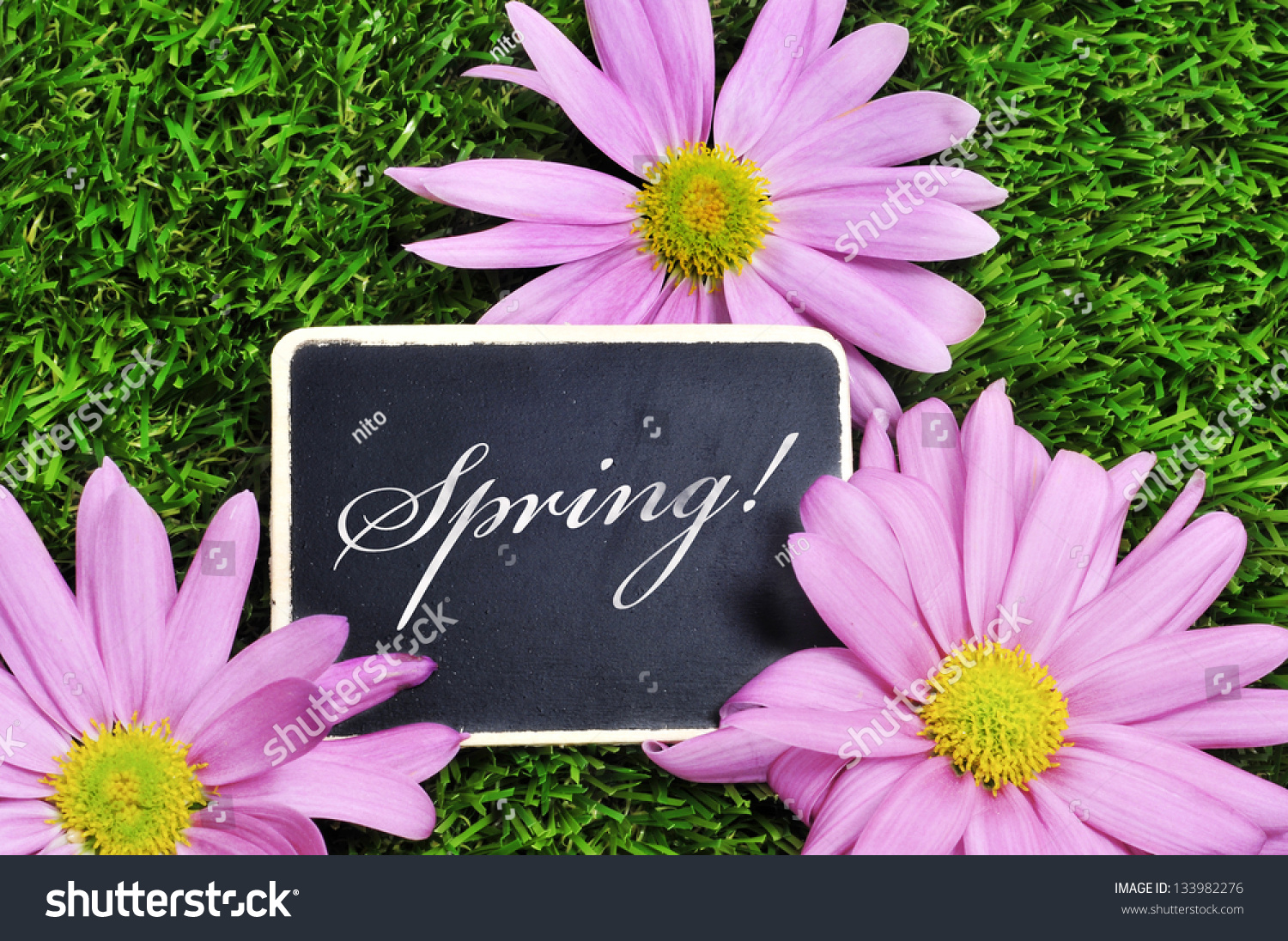 Word spring written blackboard on grass stock photo 133982276 word spring written in a blackboard on the grass with pink flowers mightylinksfo