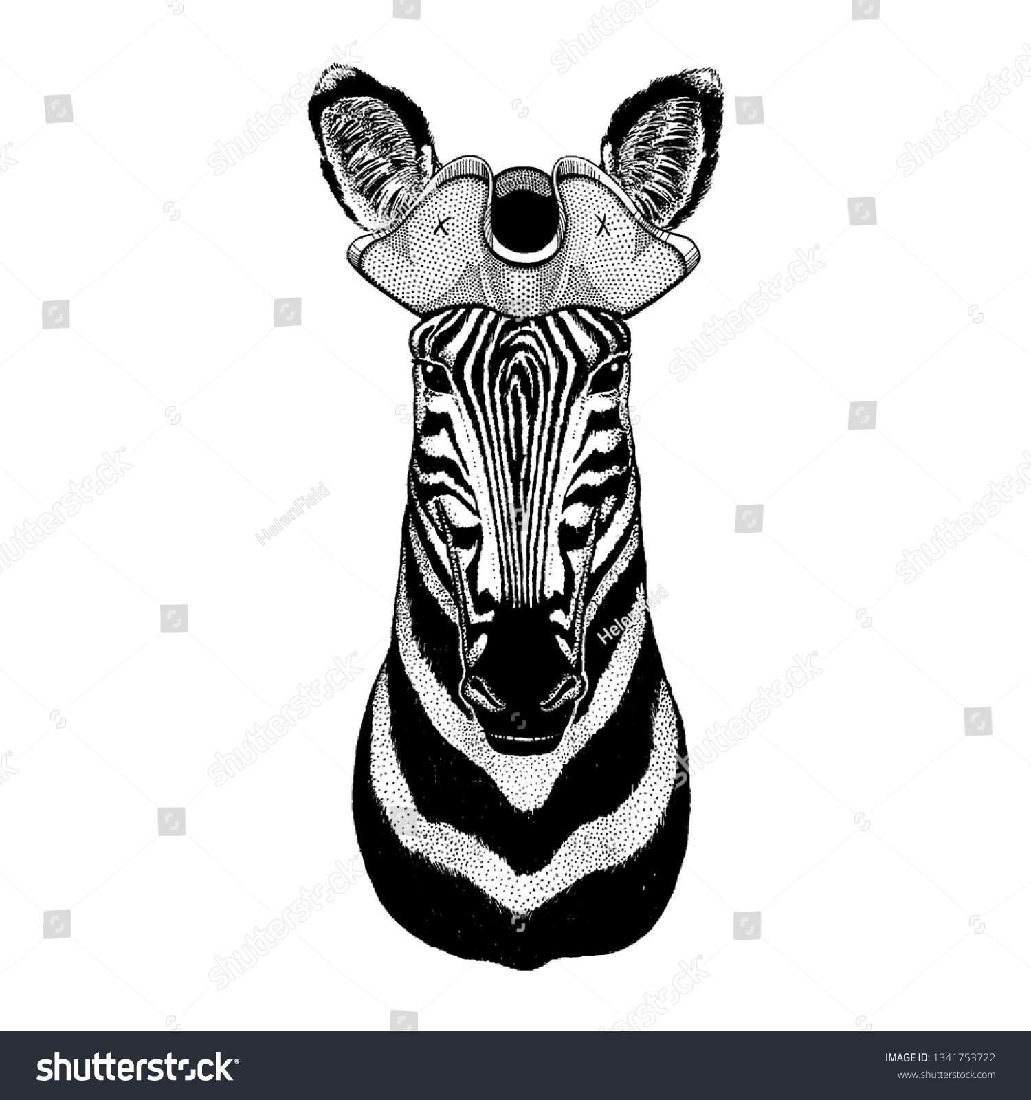 Vector De Stock Libre De Regalias Sobre Zebra Horse Wearing Pirate Tricorn Hat1341753722