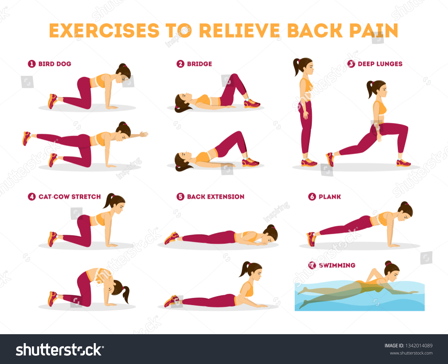 Exercise Set Relieve Back Pain Stretching Stock Vector Royalty ...