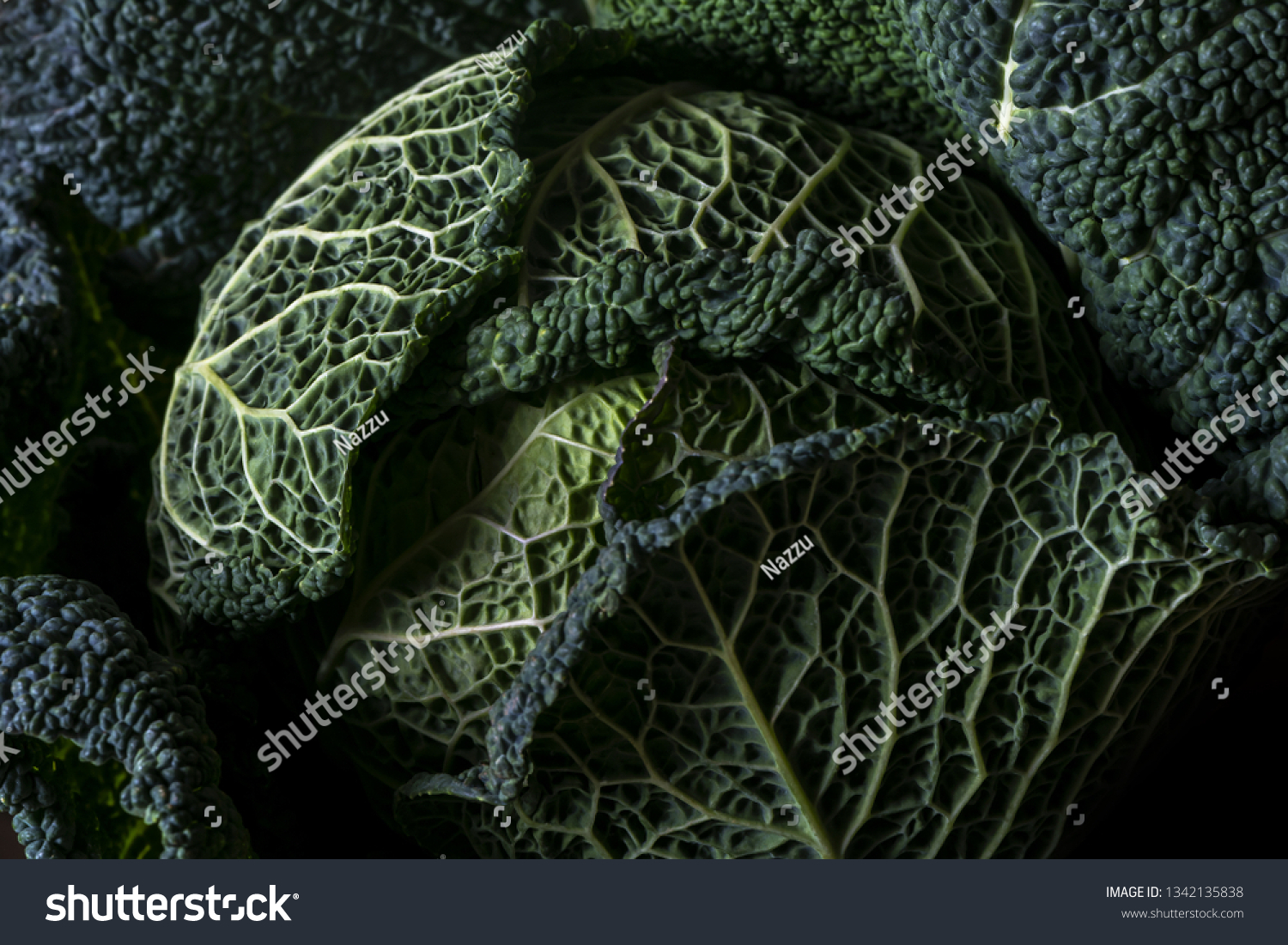 Closeup Dark Savoy Cabbage Leaves Stock Photo Edit Now 1342135838