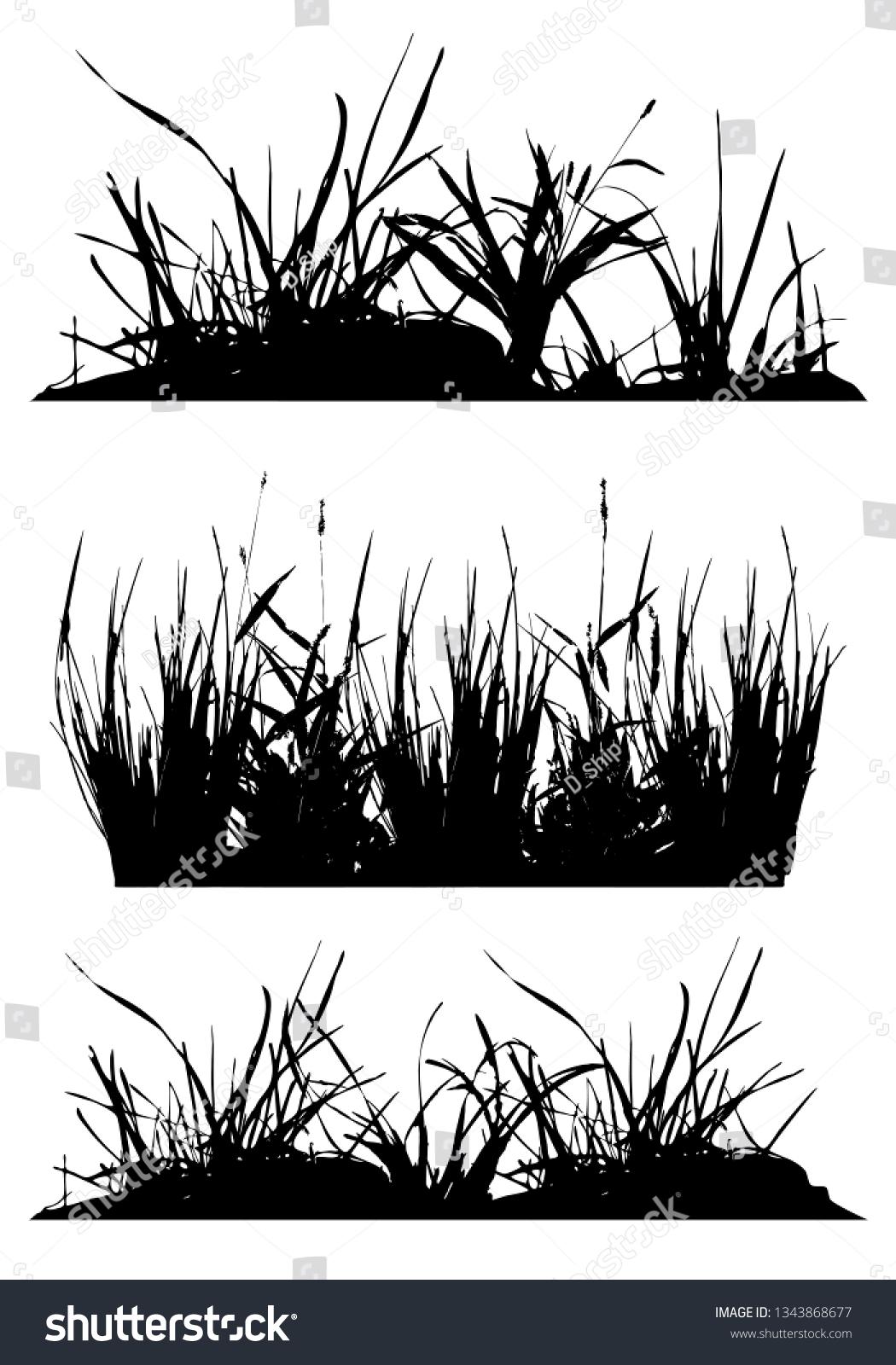 set silhouettes grass black white vector stock vector royalty free 1343868677 https www shutterstock com image vector set silhouettes grass black white vector 1343868677