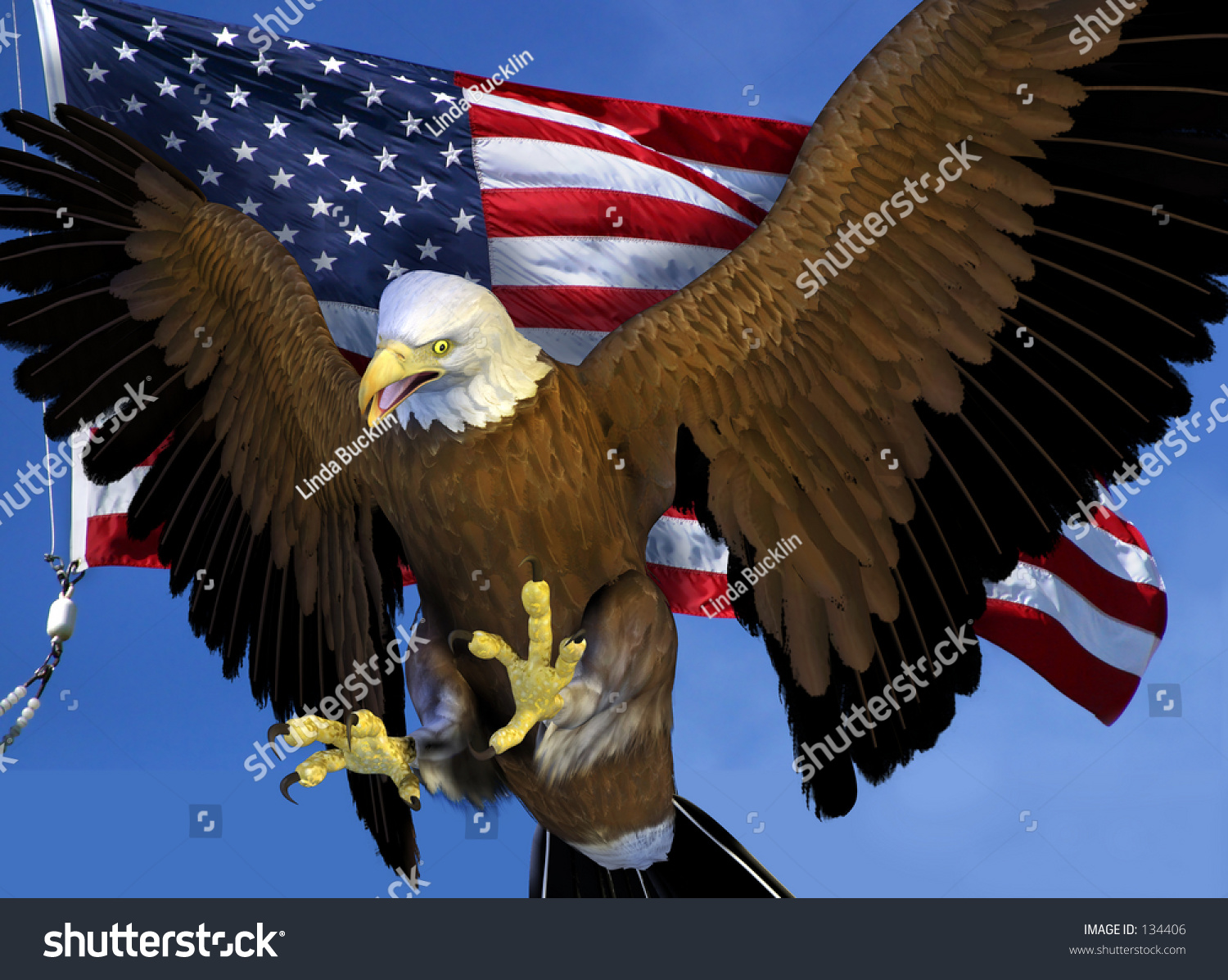 bald eagle render by - photo #25
