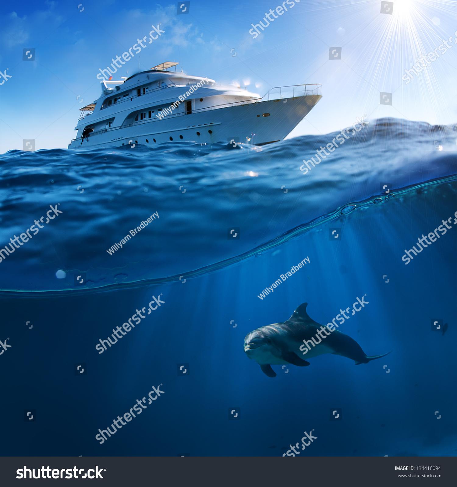 Royalty-free Underwater splitted by waterline… #134416094 Stock ...