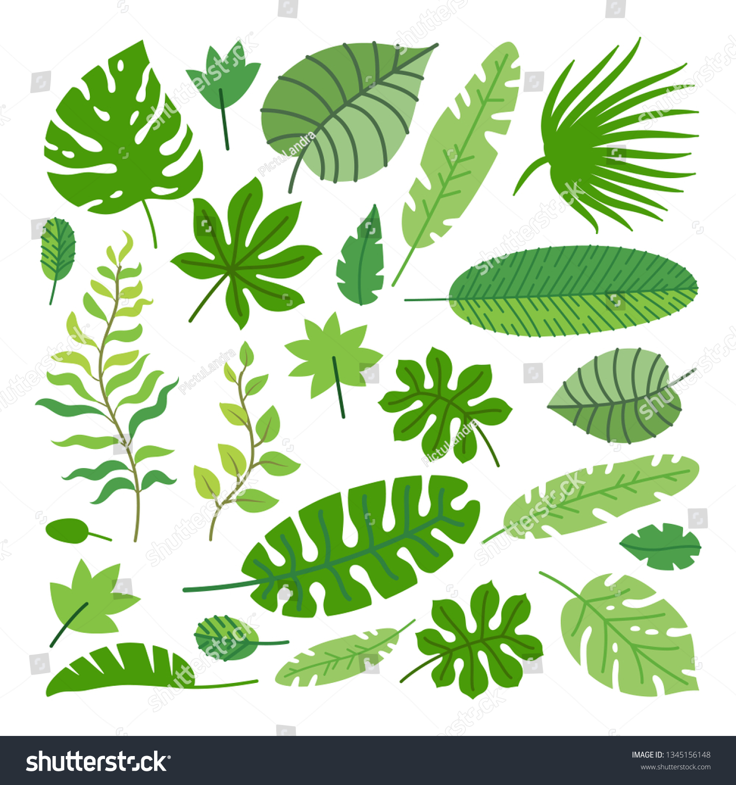 Set Tropical Leaves Vector Cartoon Rainforest Stock Vector Royalty Free 1345156148 Find & download free graphic resources for tropical leaves. https www shutterstock com image vector set tropical leaves vector cartoon rainforest 1345156148