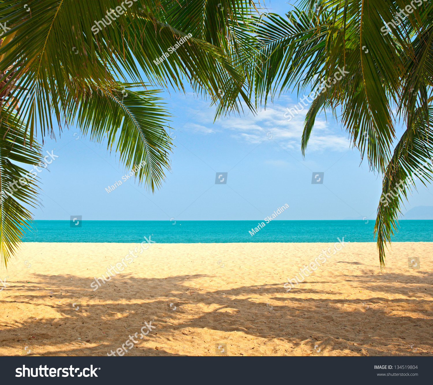 Palm Tree Beach: Palm Tree Leaves Over Luxury Beach Stock Photo 134519804