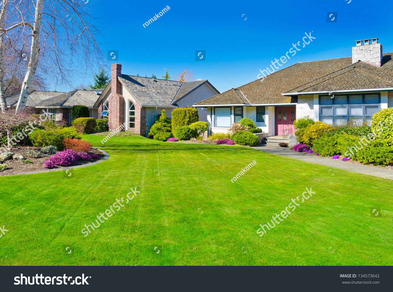 big houses with backyards big best home and house interior design