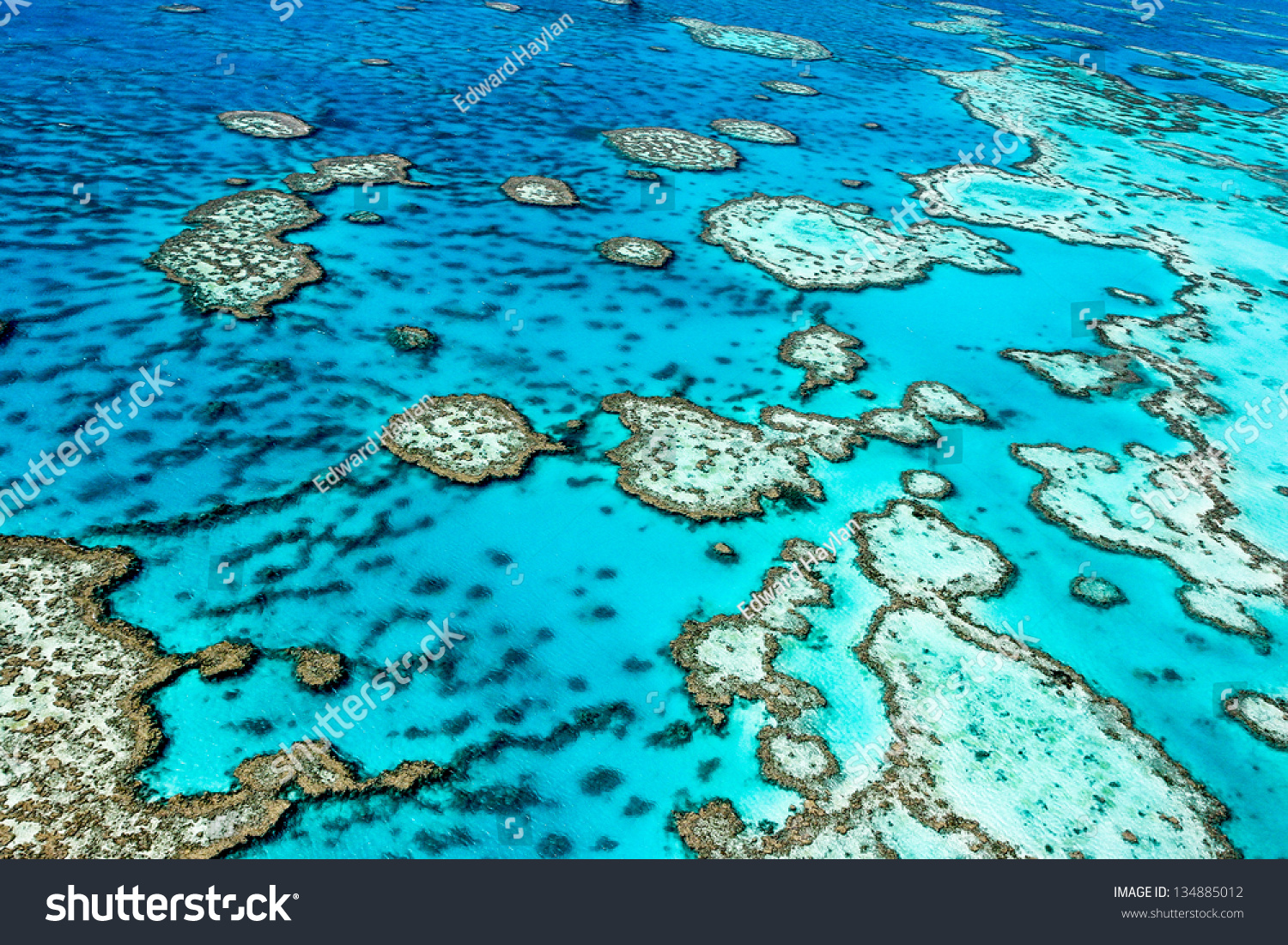 The Great Barrier Reef in Queensland, Australia.