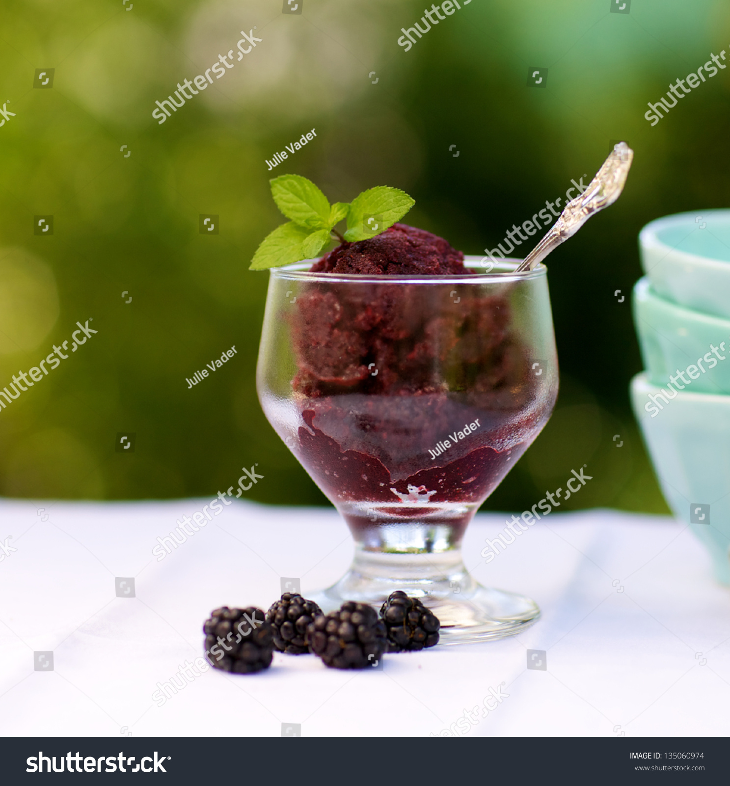 Blackberry Sorbet Or Granita With Mint Sprig Stock Photo 135060974 ...