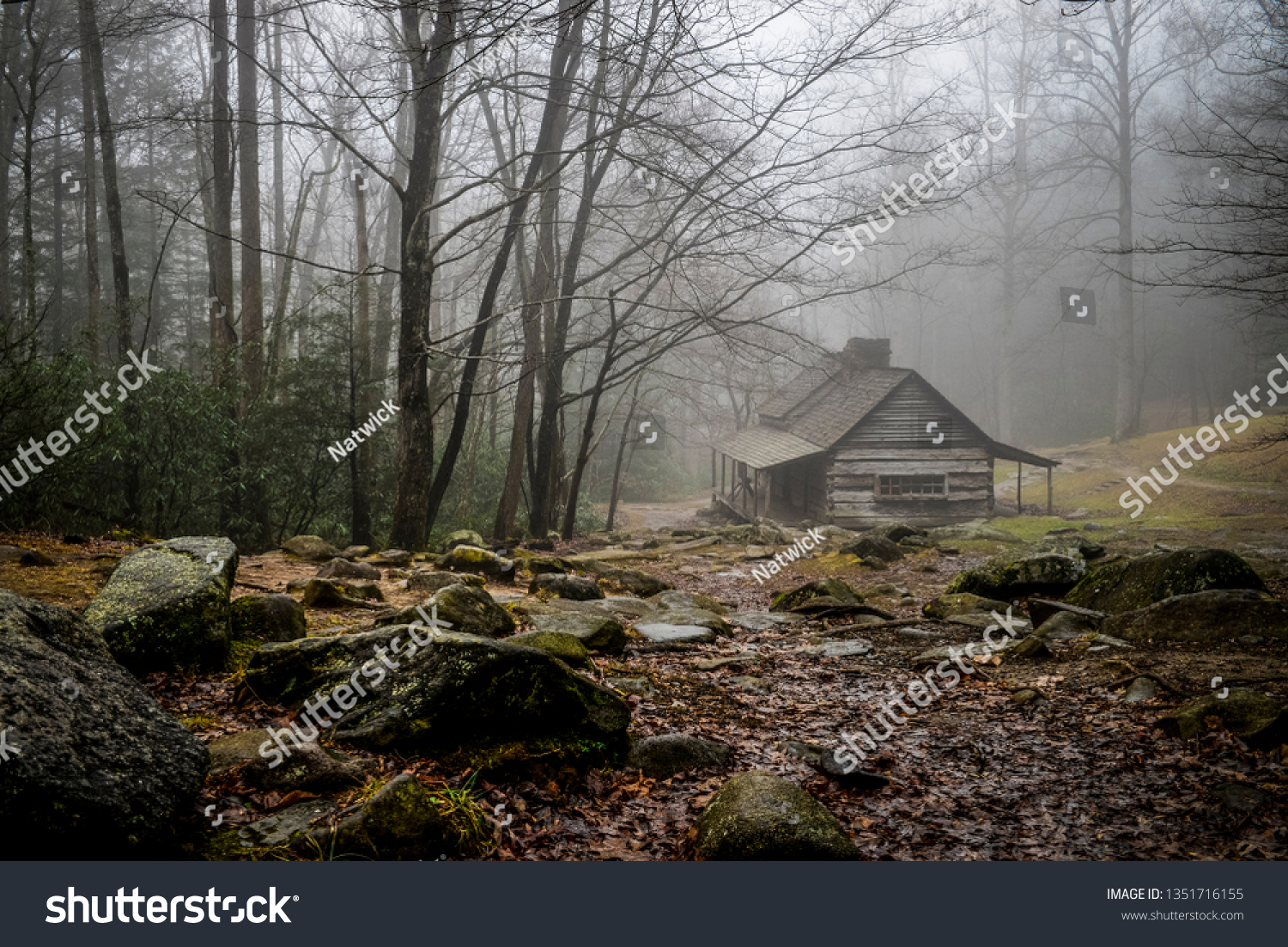 Old log cabin in the woods. #1351716155
