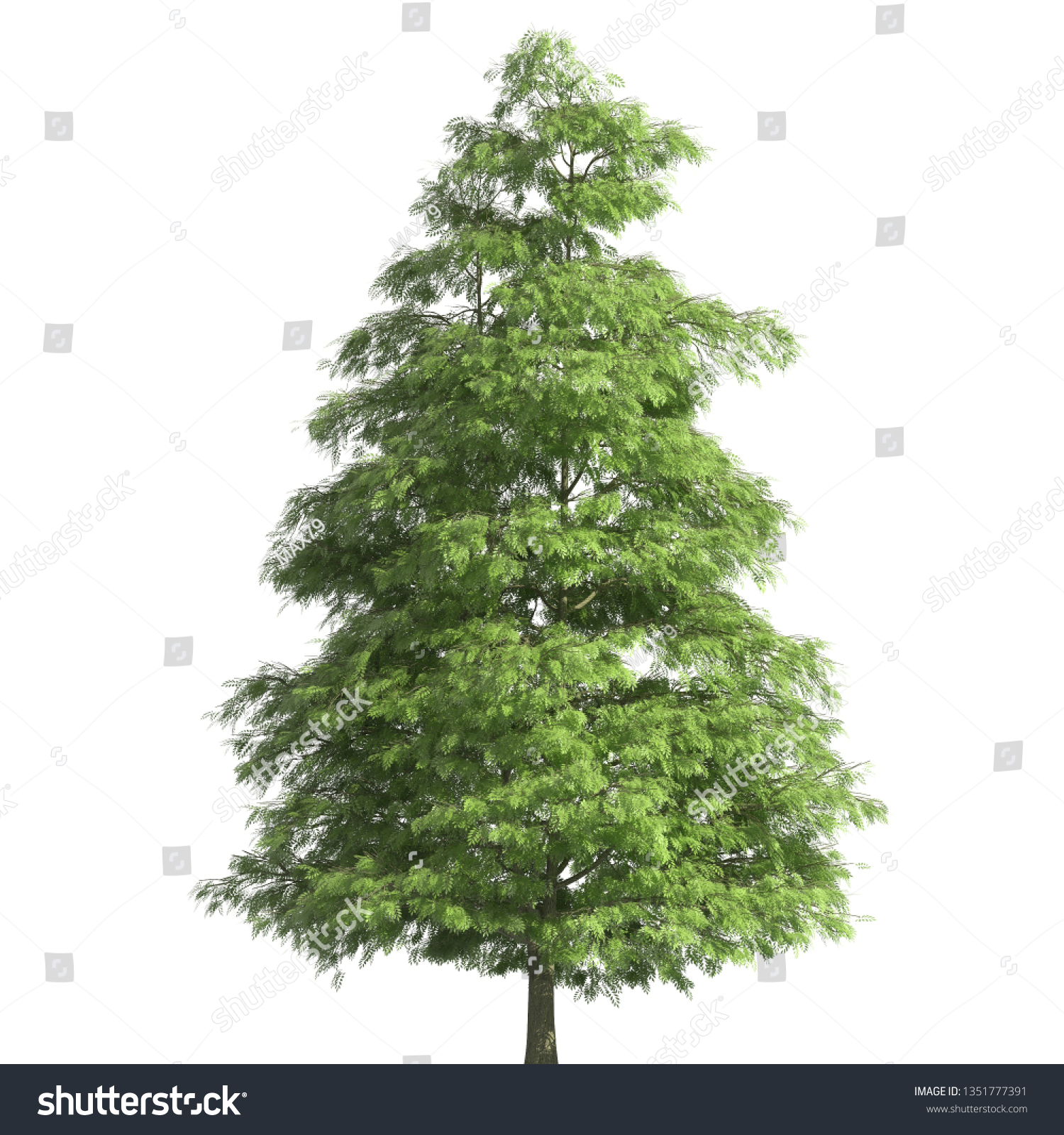 Tree 3d illustration isolated on the white background #1351777391