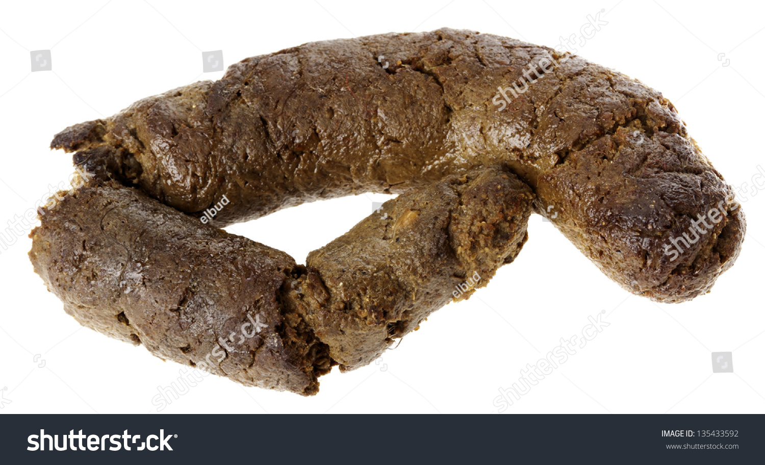Frontal View Nice Fresh Canine Excrement Stock Photo