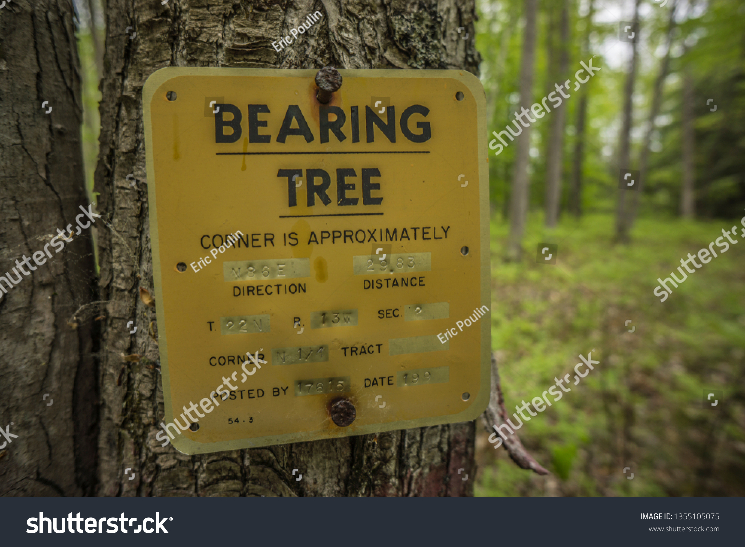 Tree Sign That Says Bearing Tree Stock Photo Edit Now 1355105075