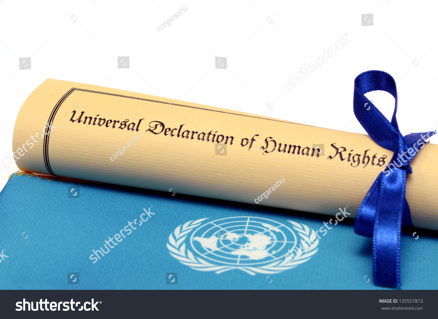 universal declaration human rights stock photo  universal declaration human rights stock photo 135557813 shutterstock